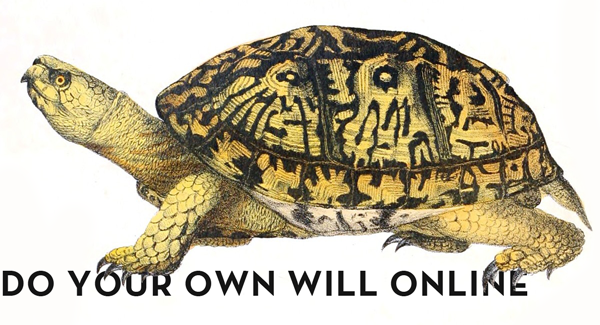 Animal-Reptile-Turtle-2Fvb.png
