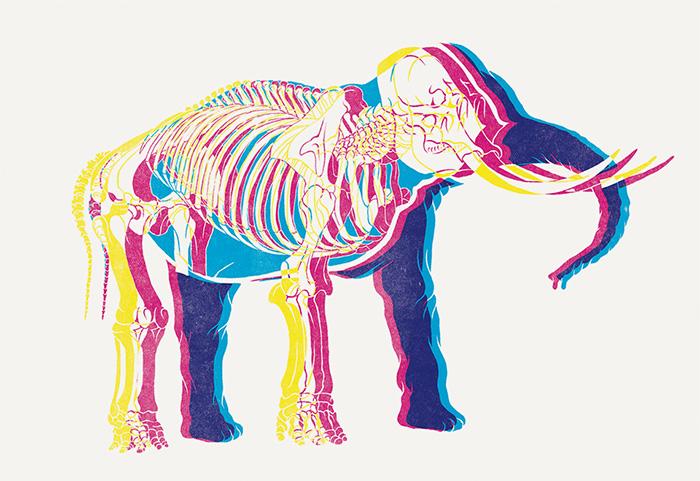 "Elephant from ""Spot"""