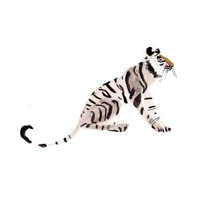 tiger_670.jpg