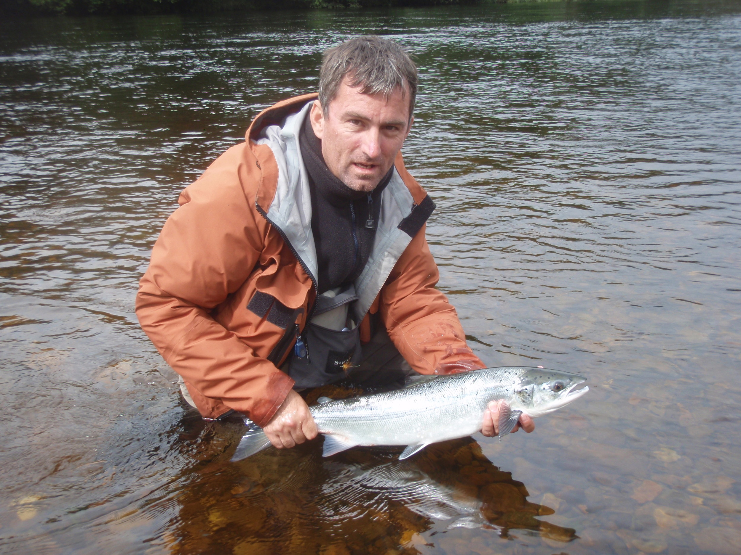 springer salmon, fish tay, scottish salmon fishing, river tay, scotland, perthshire, dalmarnock fishings, pitlochry, fly fishing, guided tours, fishing tours.jpeg
