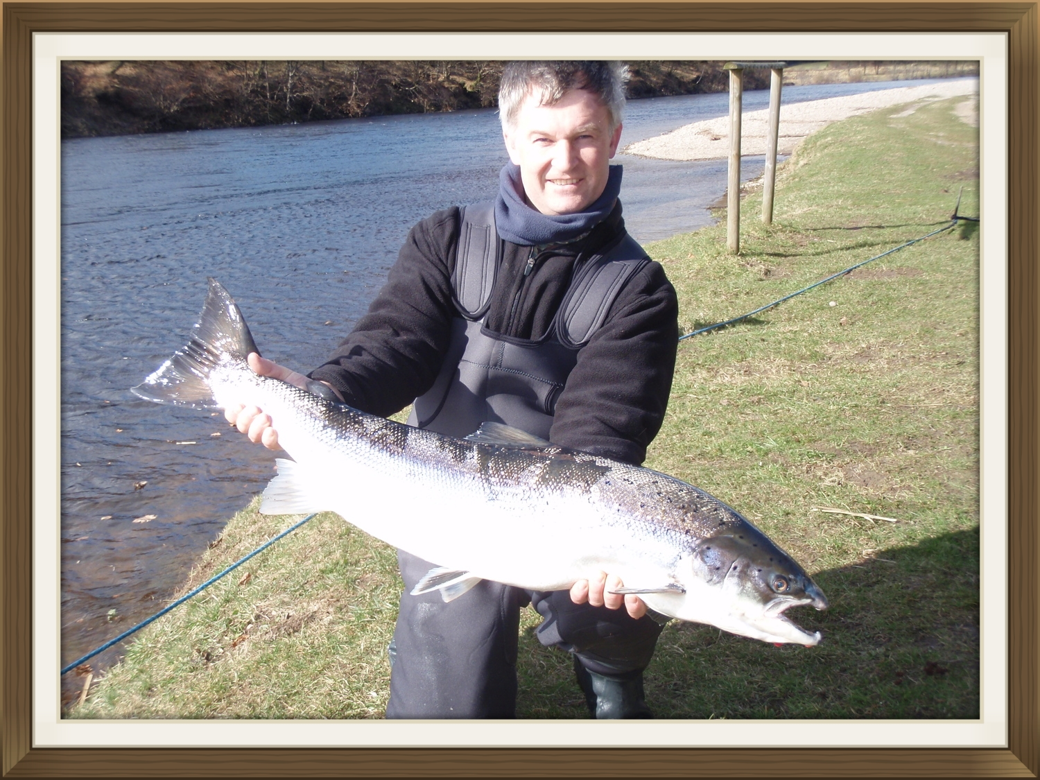 18lb springer salmon, fish tay, scottish fishing, fish scotland, dalmarnock fishings, fish tay, river tay, fly fishing, perthshire, scottish rivers,springer, cock fish, .jpeg