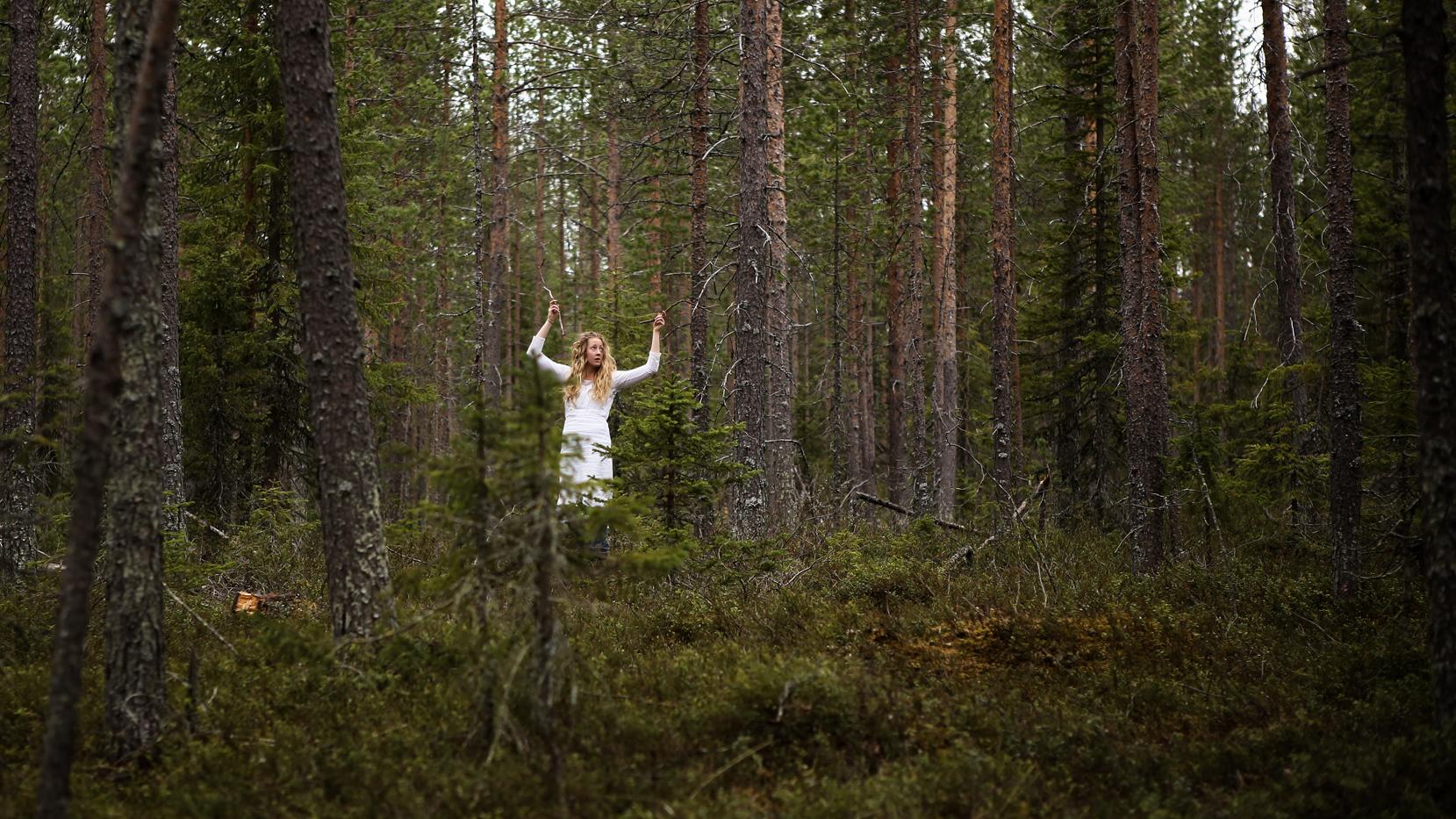 Metsäprojekti_Hiljaisuusfestivaali_2015_C_Jouni_Ihalainen-84.jpg