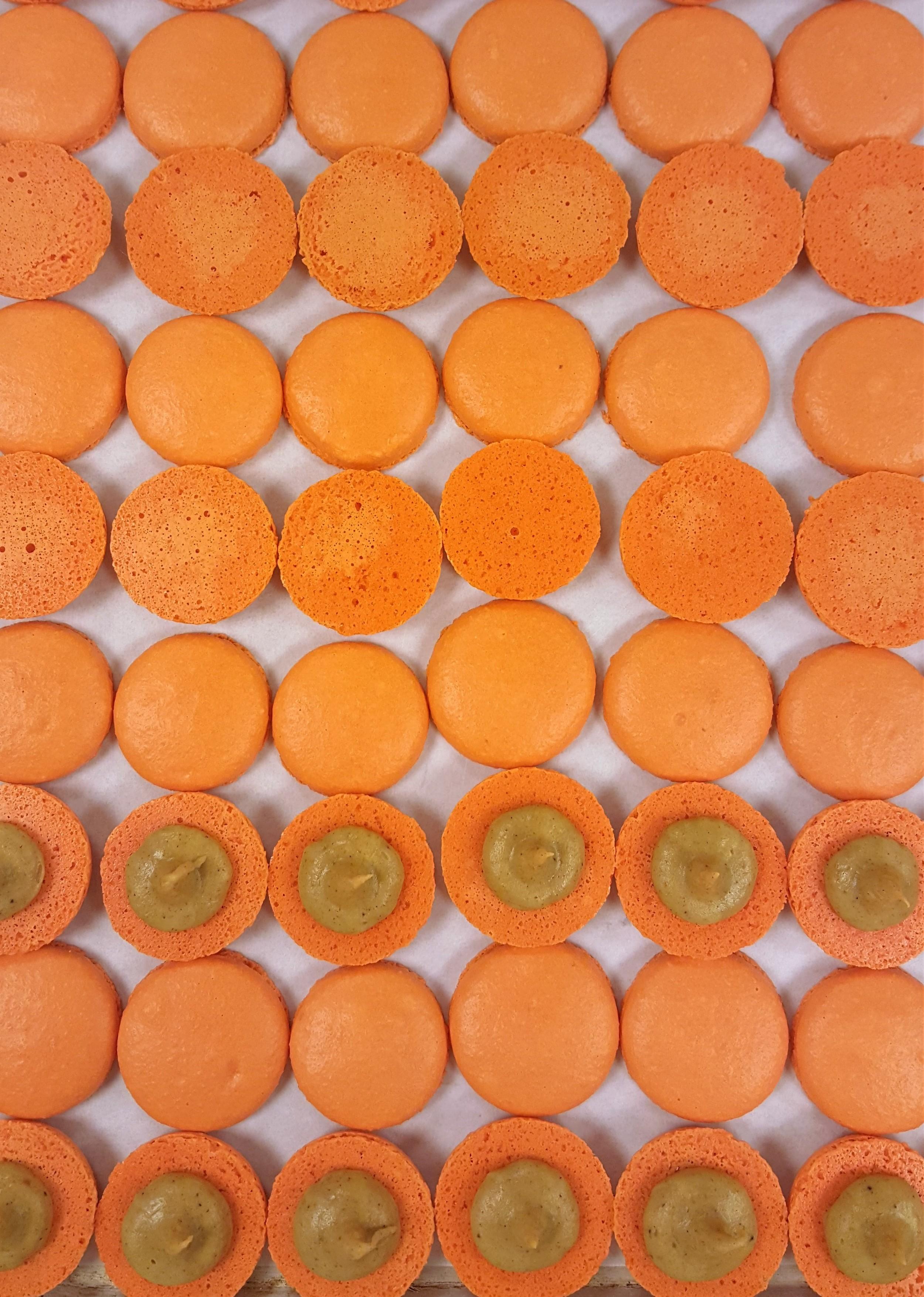 Pumpkin Macs Open.jpg