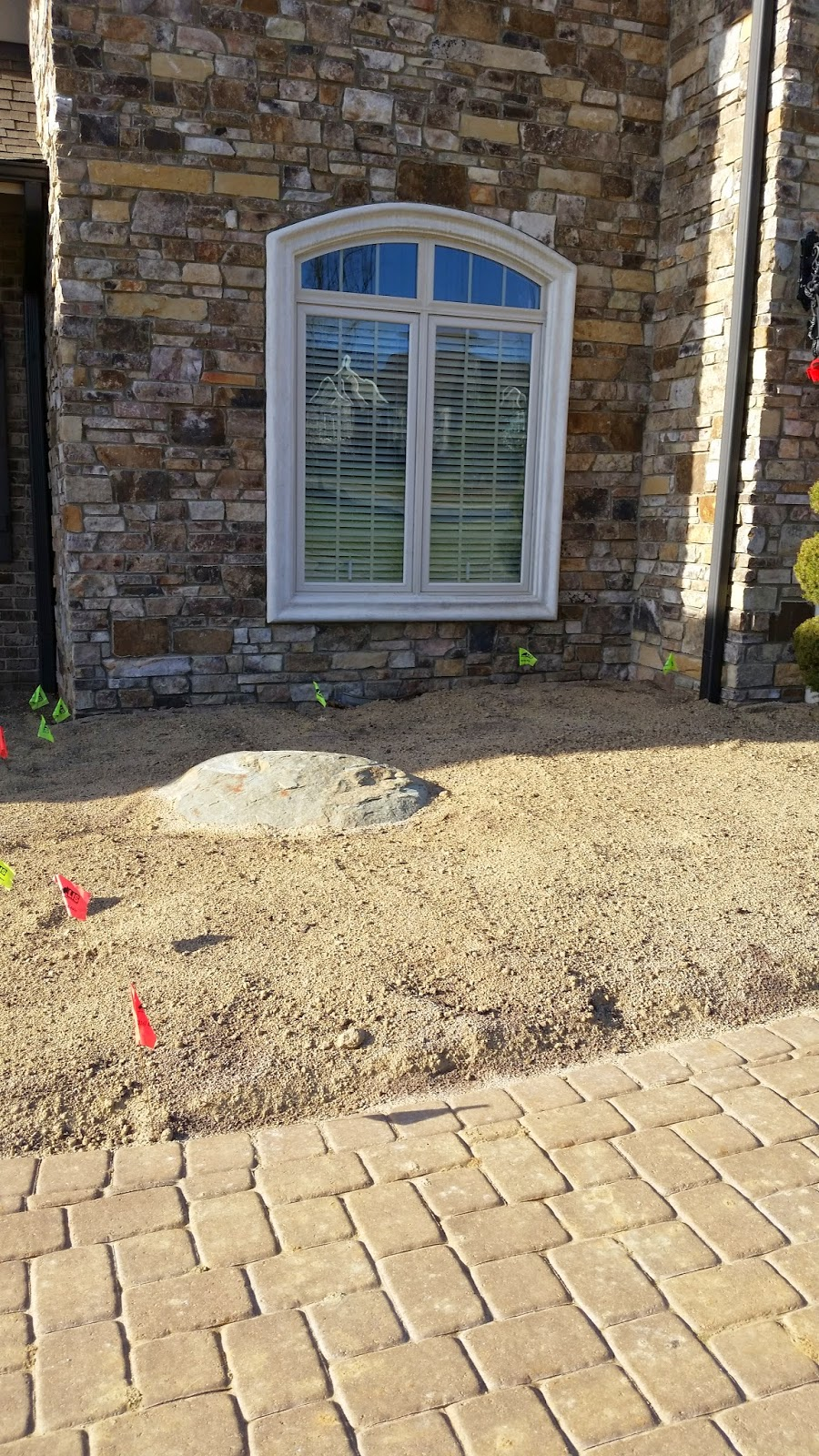 A properly amended and tilled bed