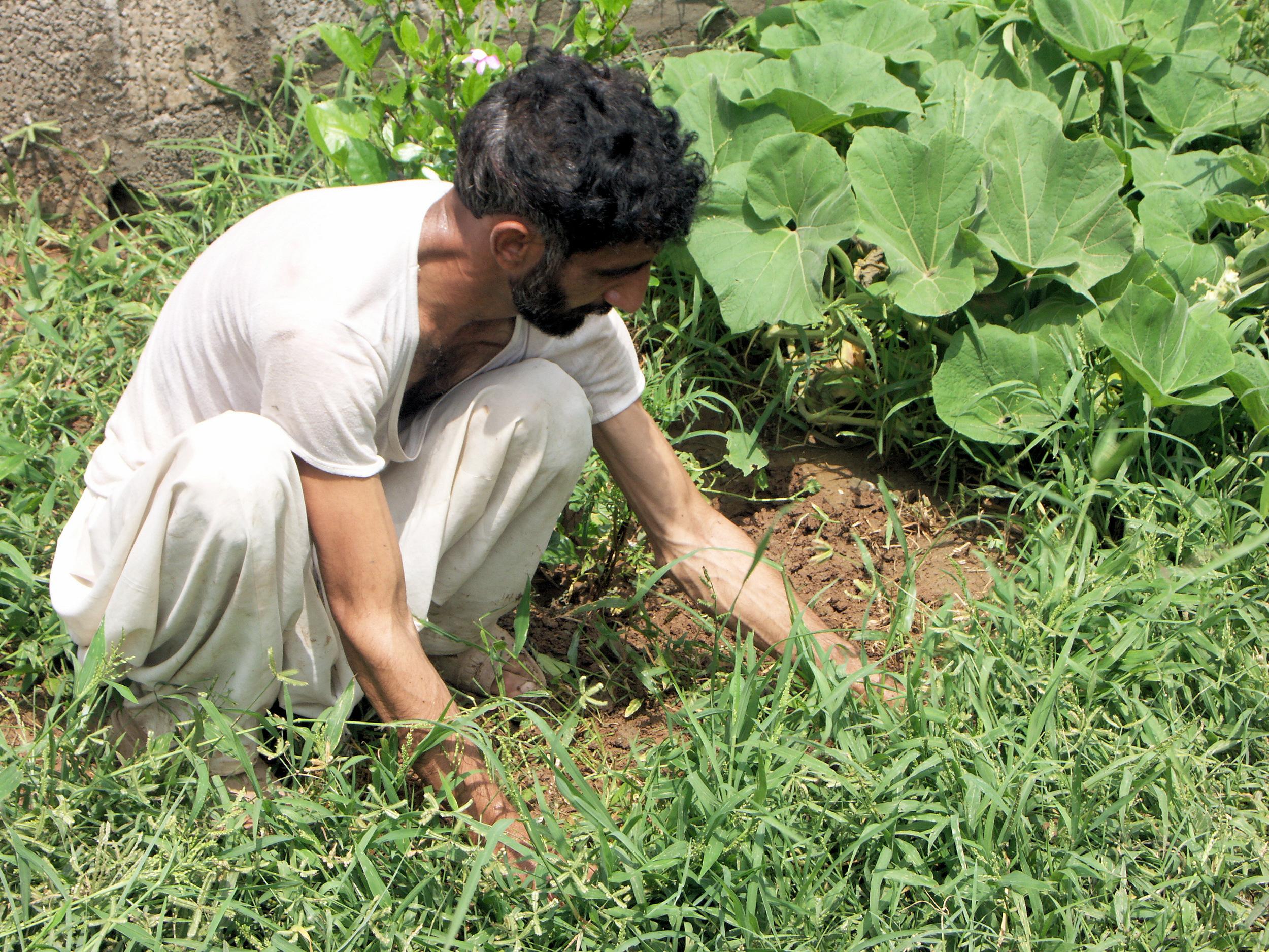 041 PB Gardener.jpg