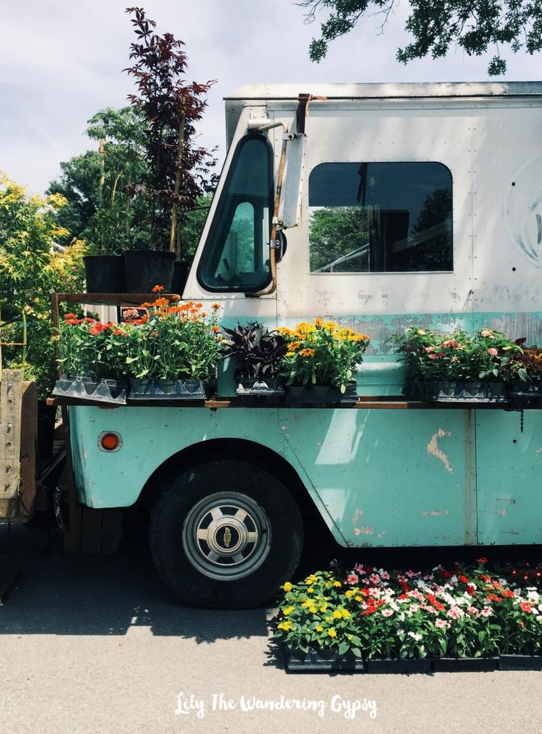 Cool Mint Truck + Flowers