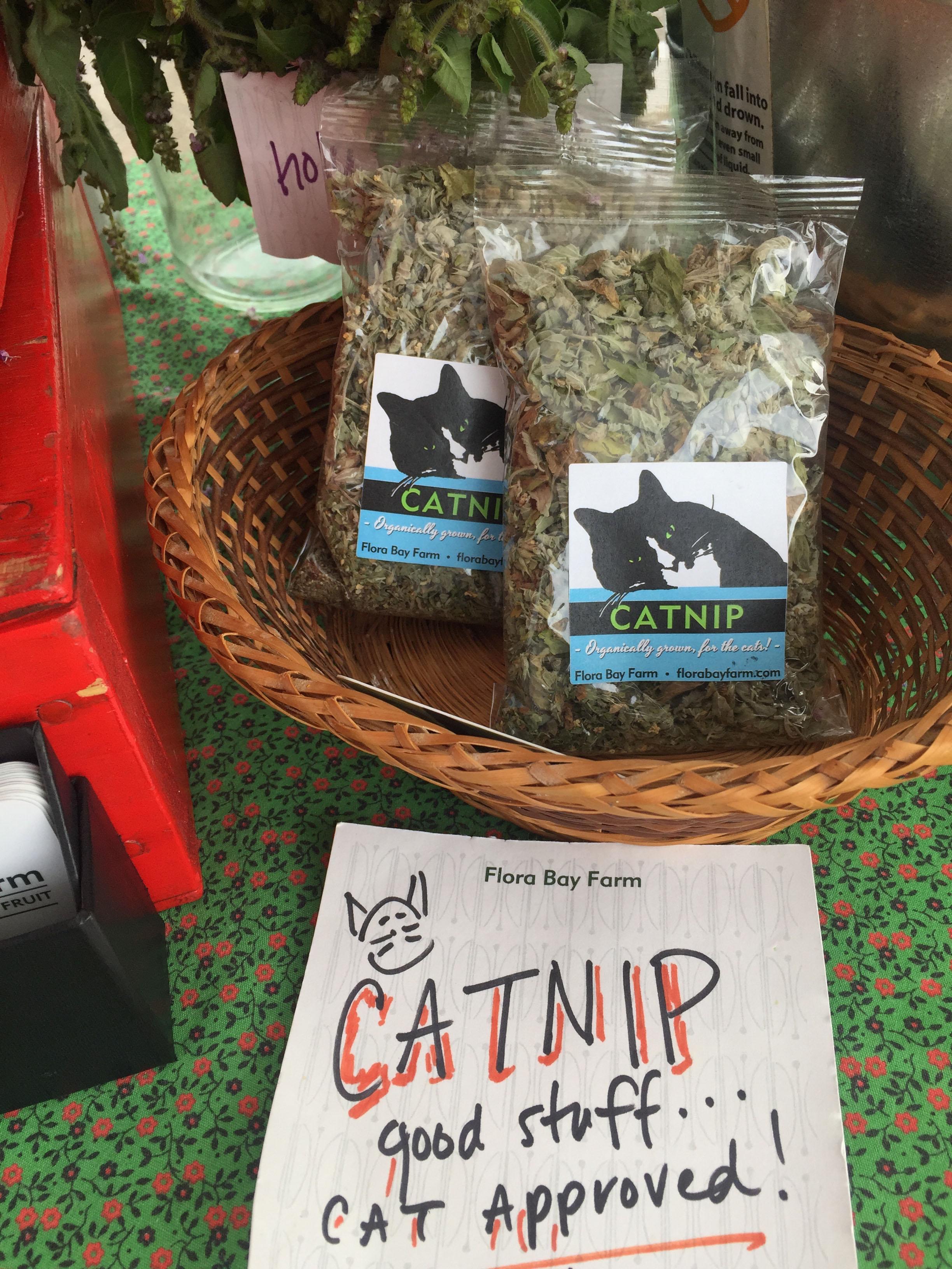 Catnip by Flora Bay Farms