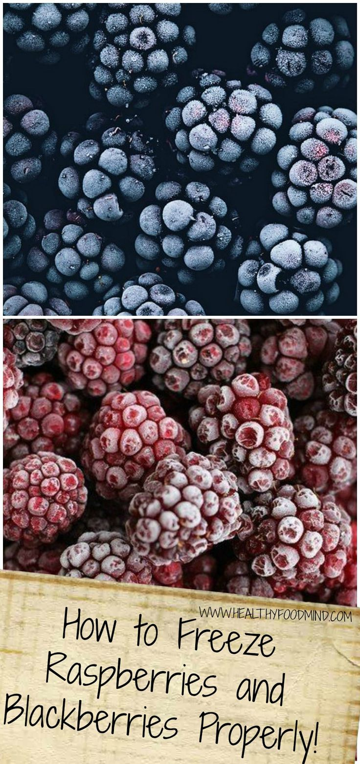 Berry Recipe 11.jpg