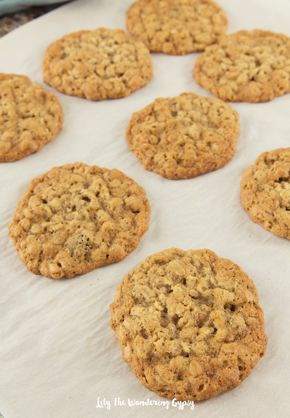 Awesome Oatmeal Cookies! YUM!