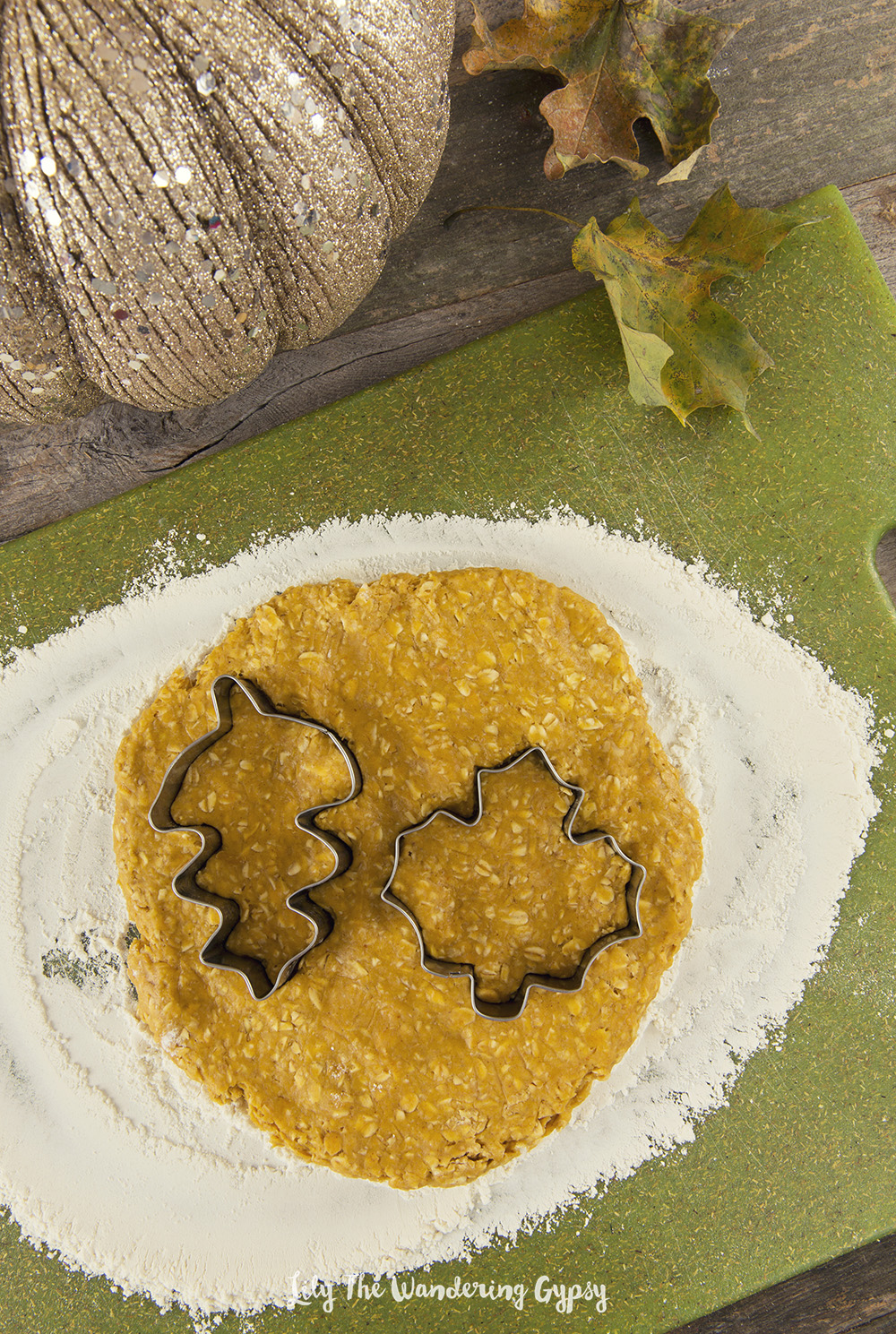 Pumpkin Oatmeal Dog Treats Recipe