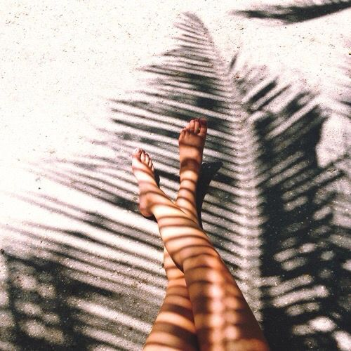 In the shade of a palm tree!