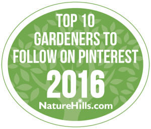 Top Gardeners To Follow On Pinterest