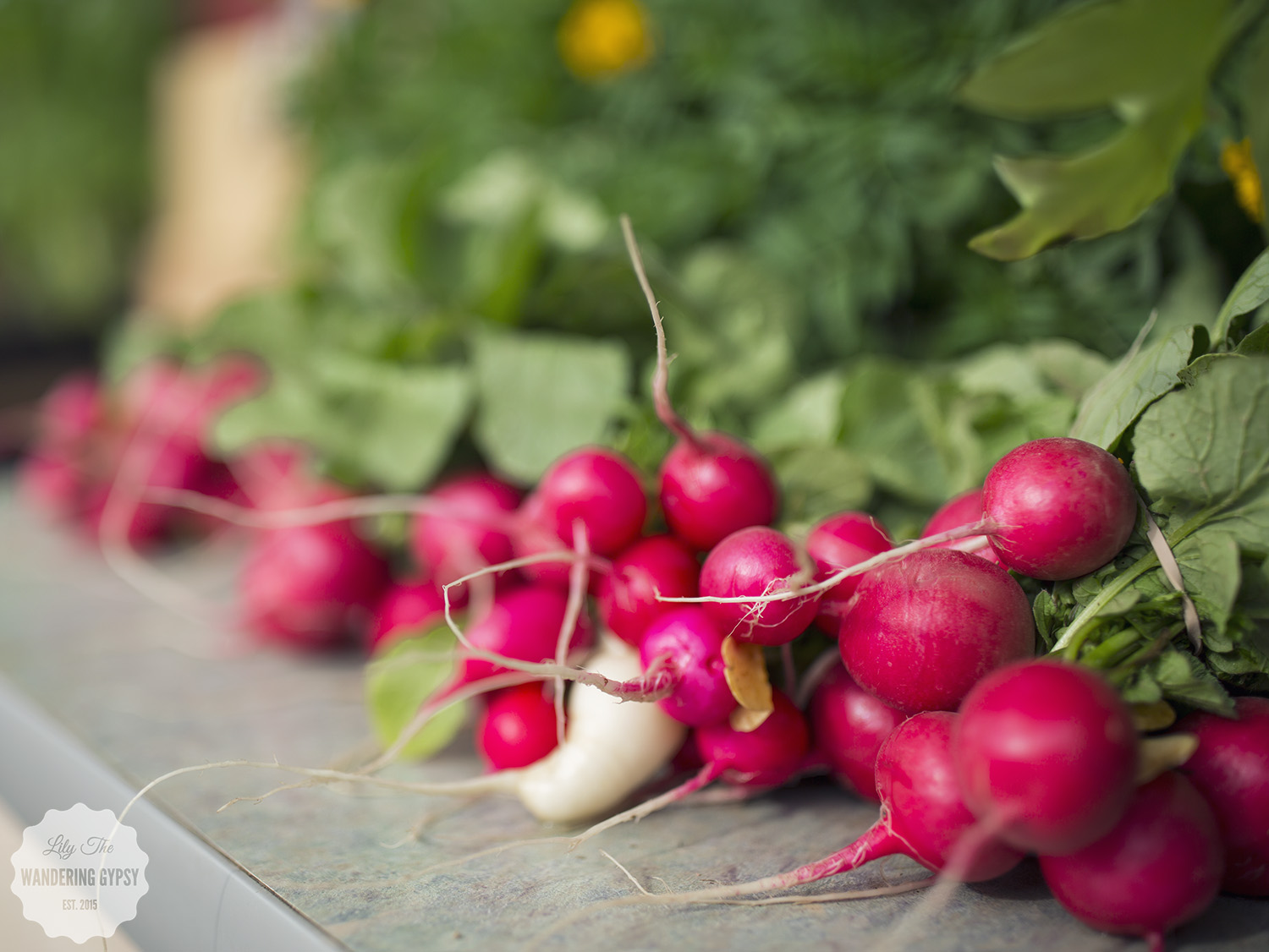 Radishes From Homer Grown