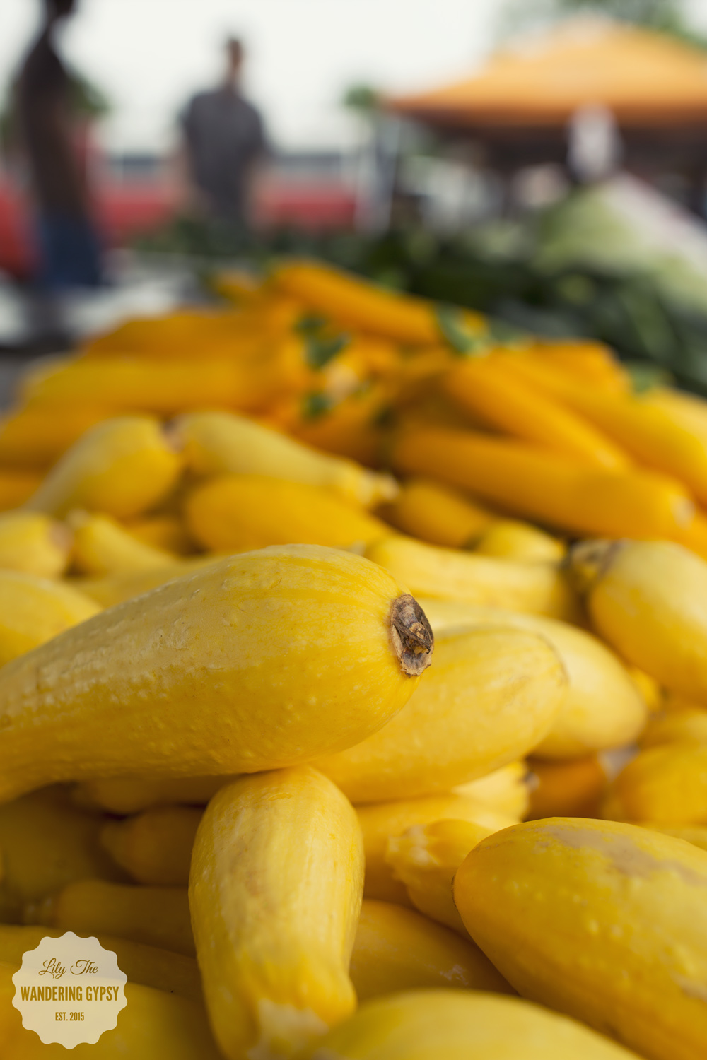 Squash At The Carbondale Market