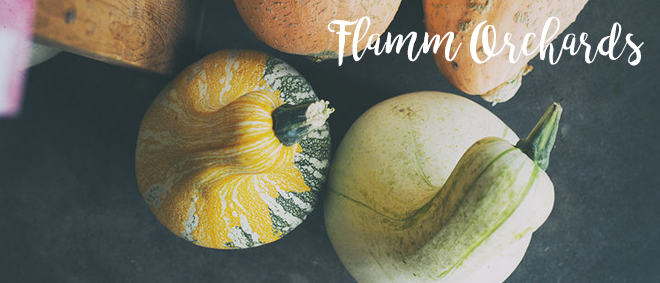 An Inspiring Visit To Flamm Orchards