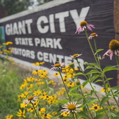 MAKANDA, IL // GIANT CITY STATE PARK