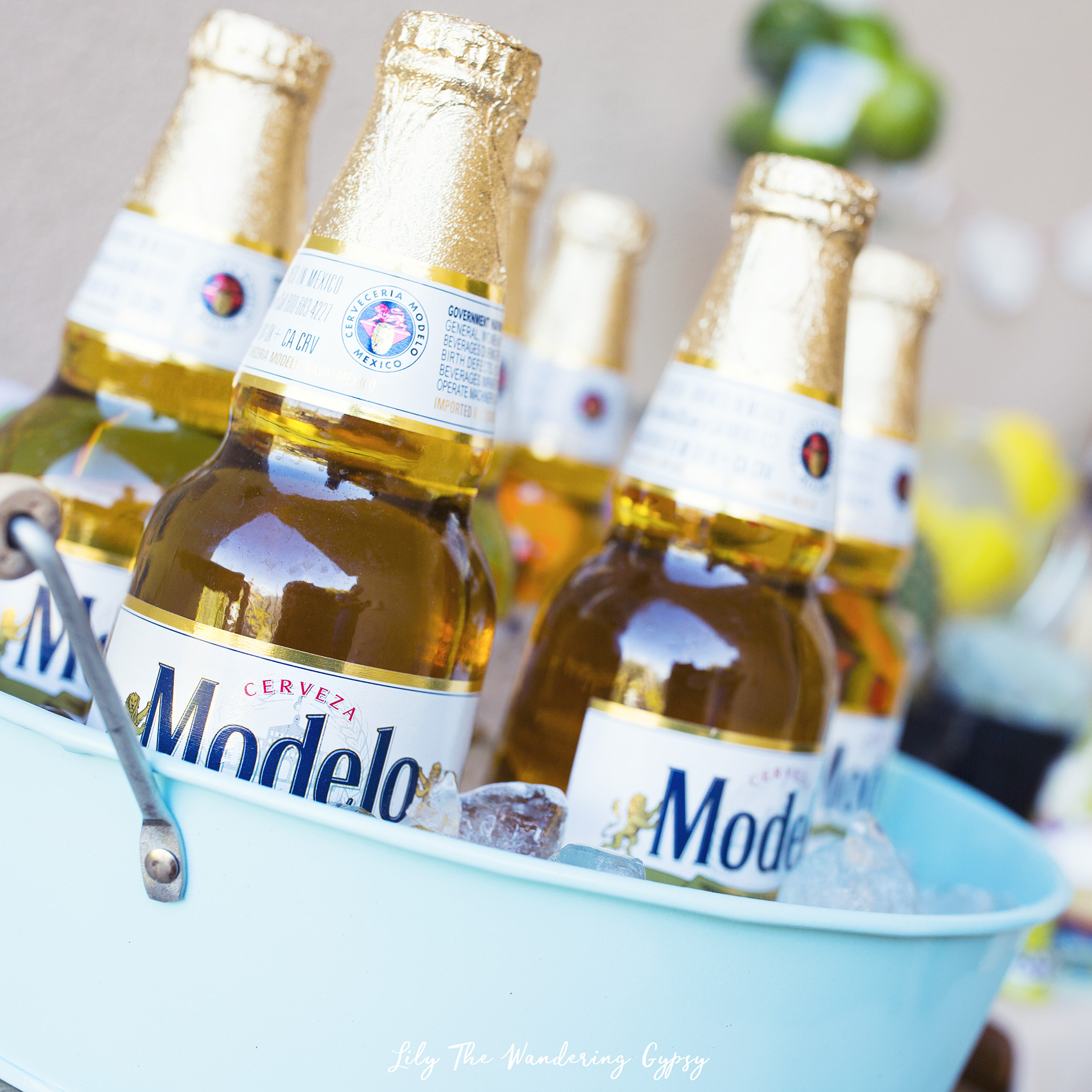 A Fun Cinco De Mayo Party With Corona And Modelo Lily The Wandering Gypsy