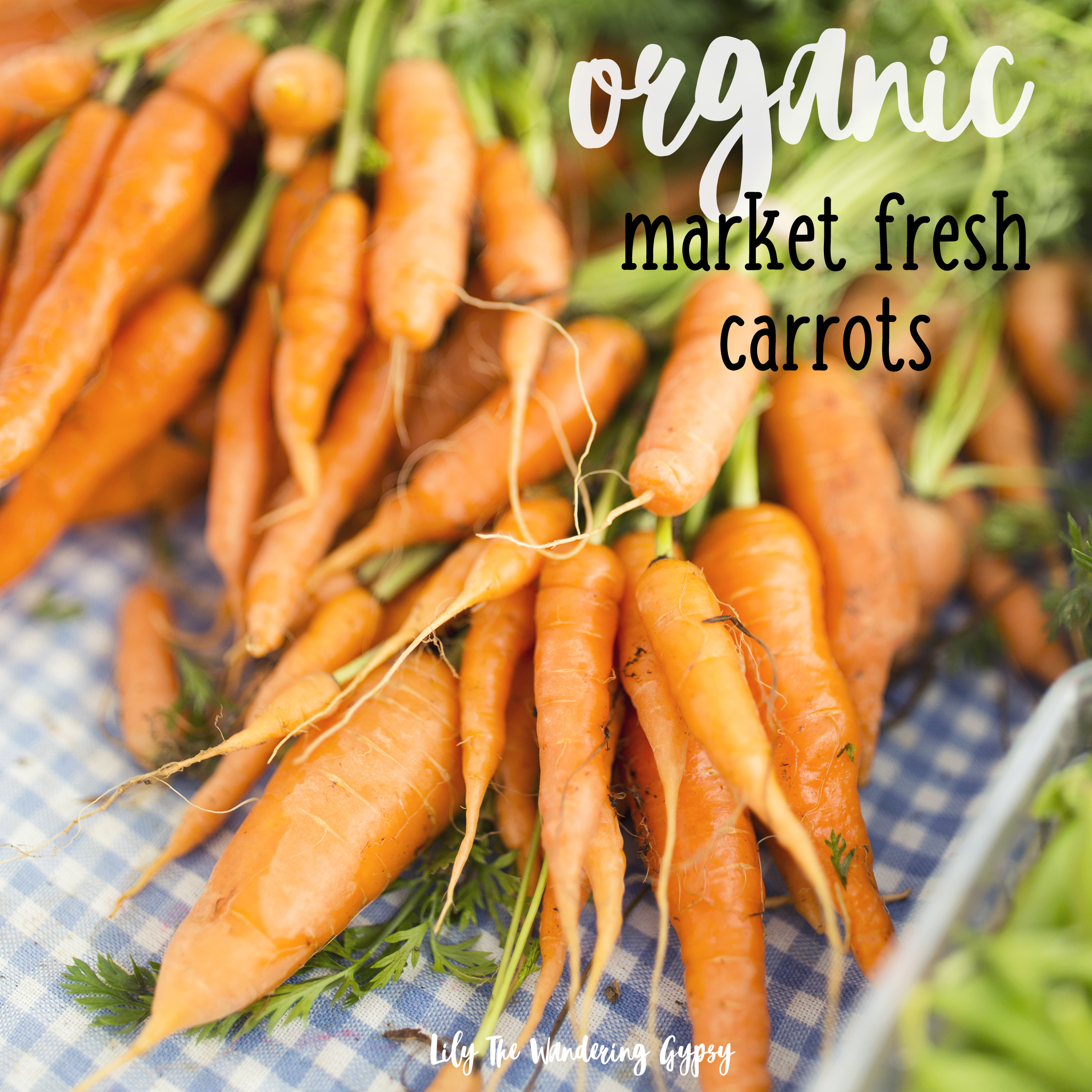 Organic Market Fresh Carrots from Countrysprout Organics