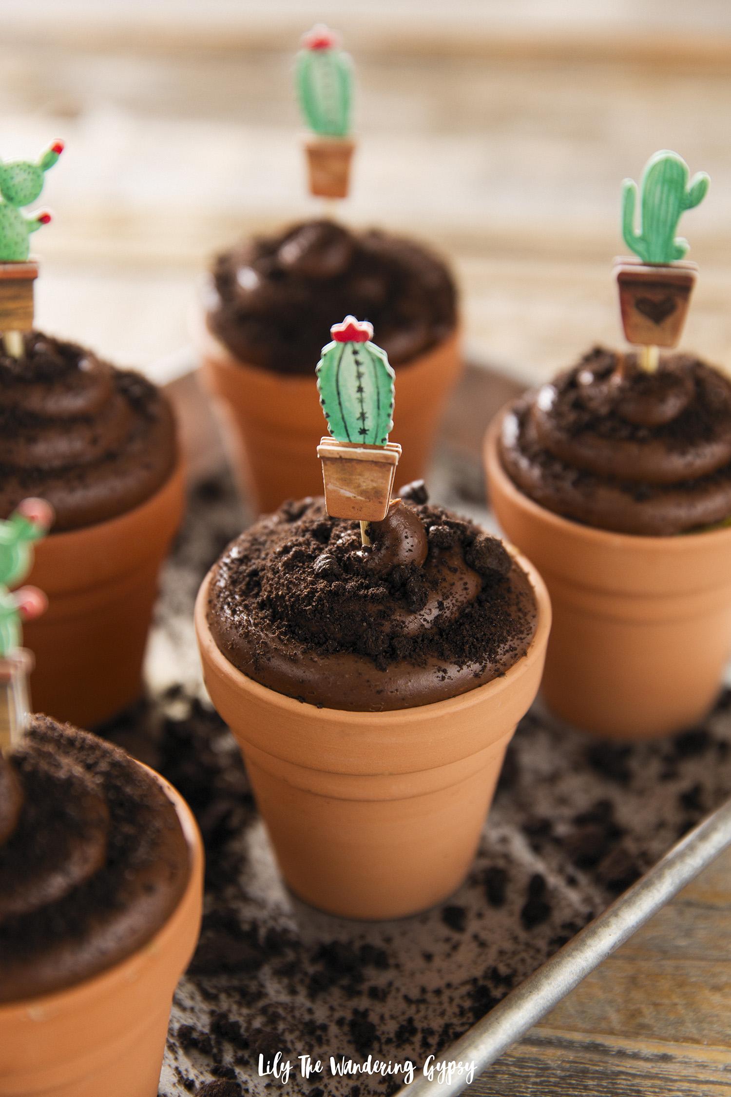 Cactus Cupcakes in Terra Cotta Pots Recipe