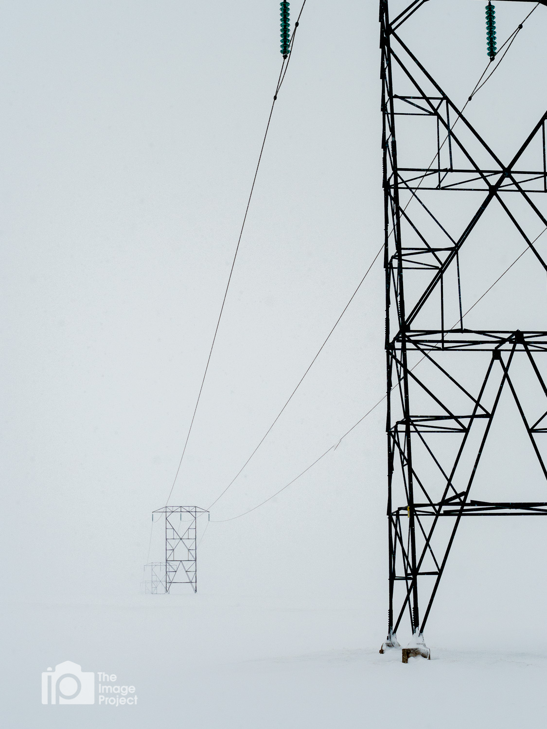 Electricity pylons during a snowstorm, north Iceand