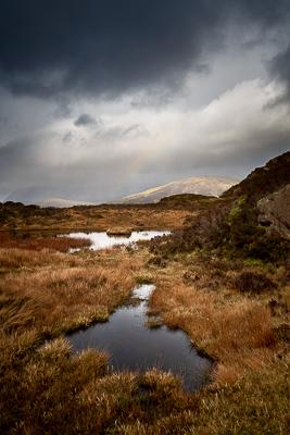 Haystacks, Lake District