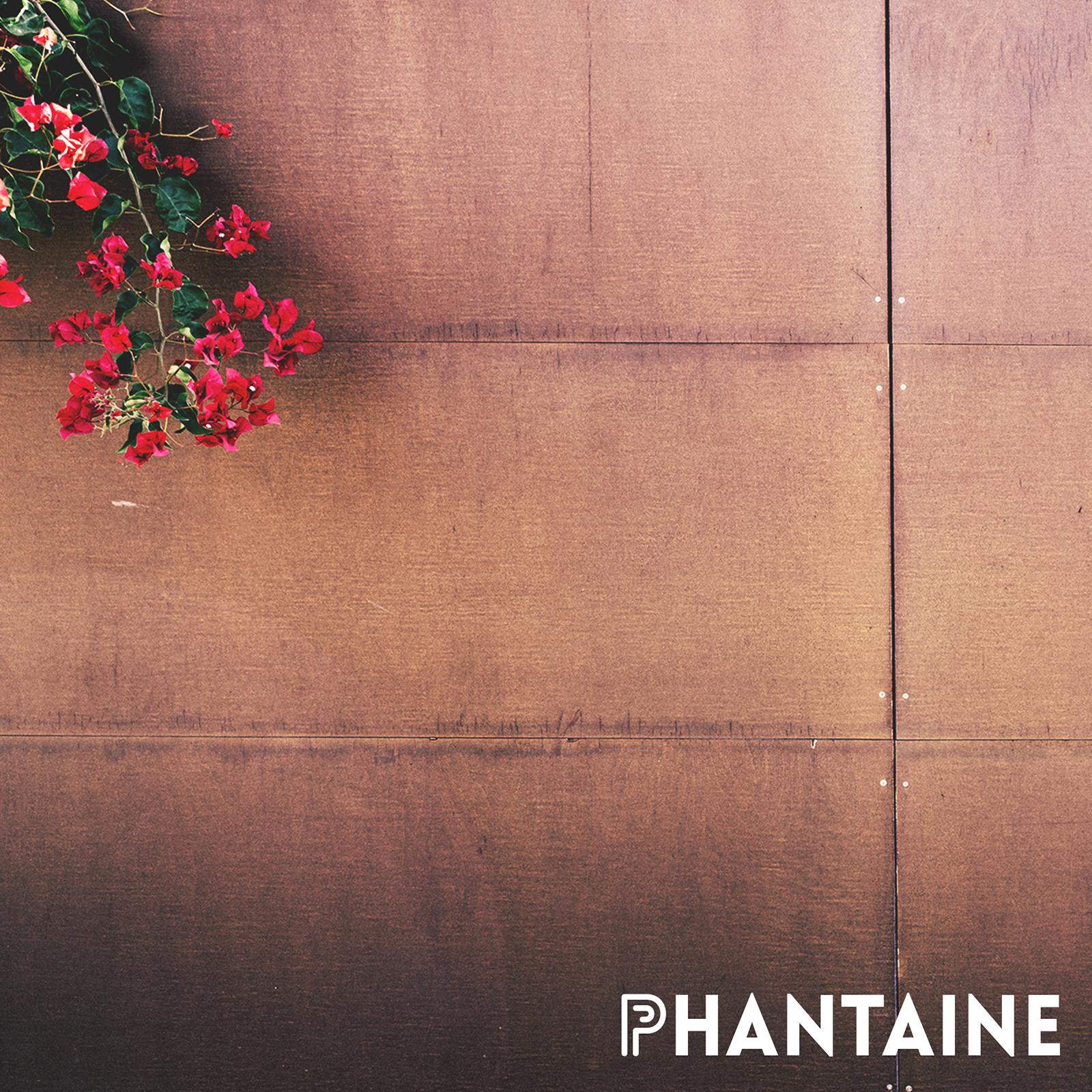Phantaine Wall Flower (logo lower right).jpg