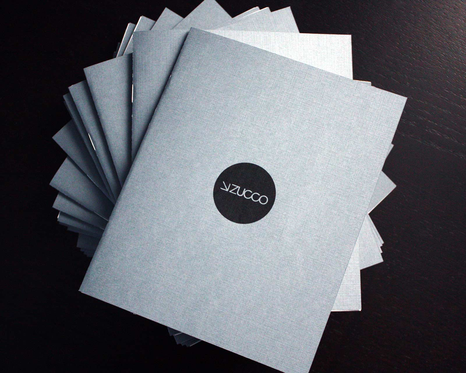 justin-zucco-self-promo-book-1.jpg