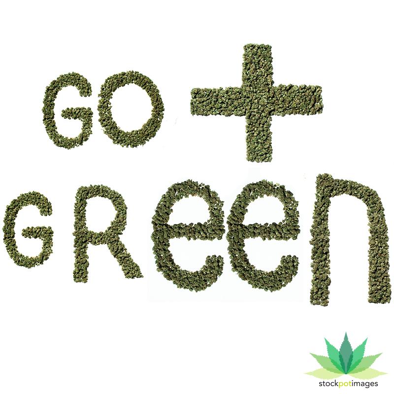 WASHINGTON GOES GREEN!