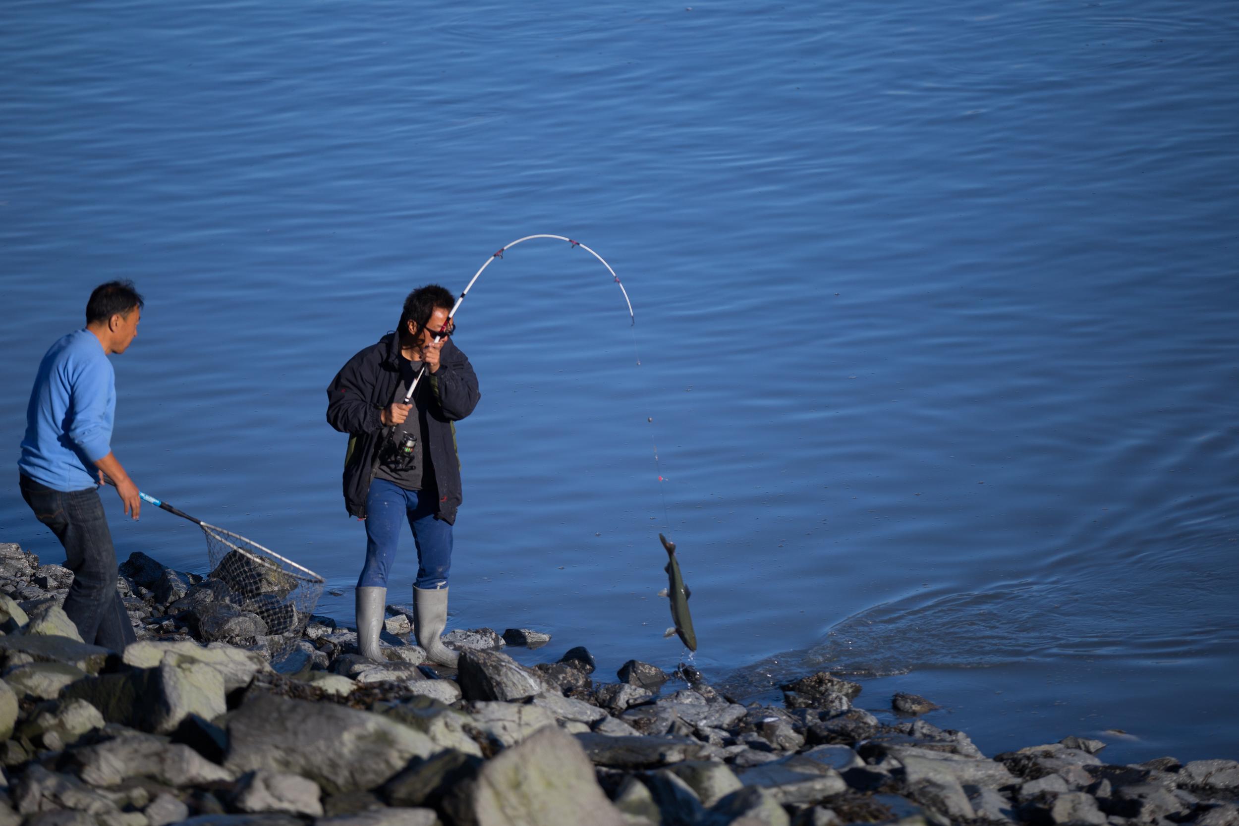 Fisherman near the salmon hatchery, Valdez, Alaska
