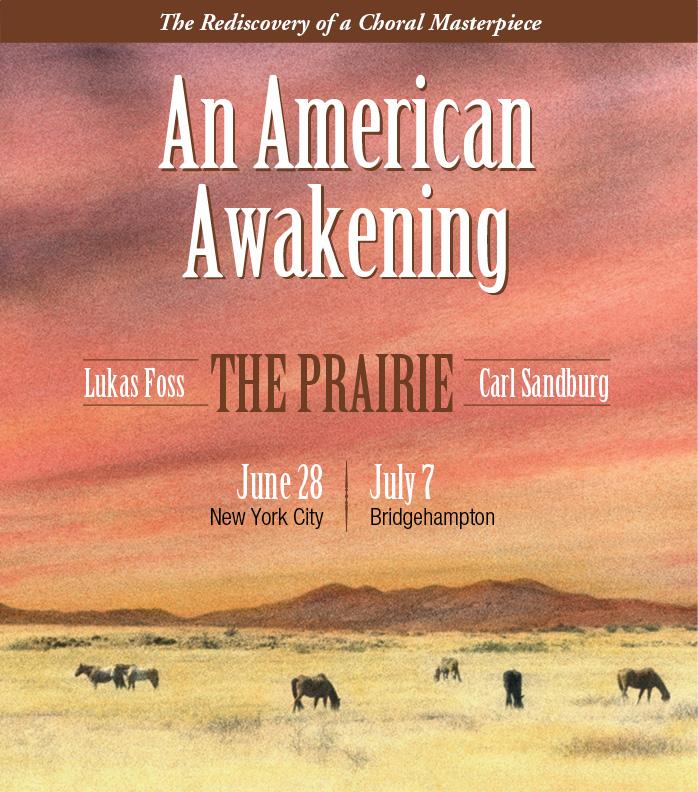 An American Awakening Brochrue