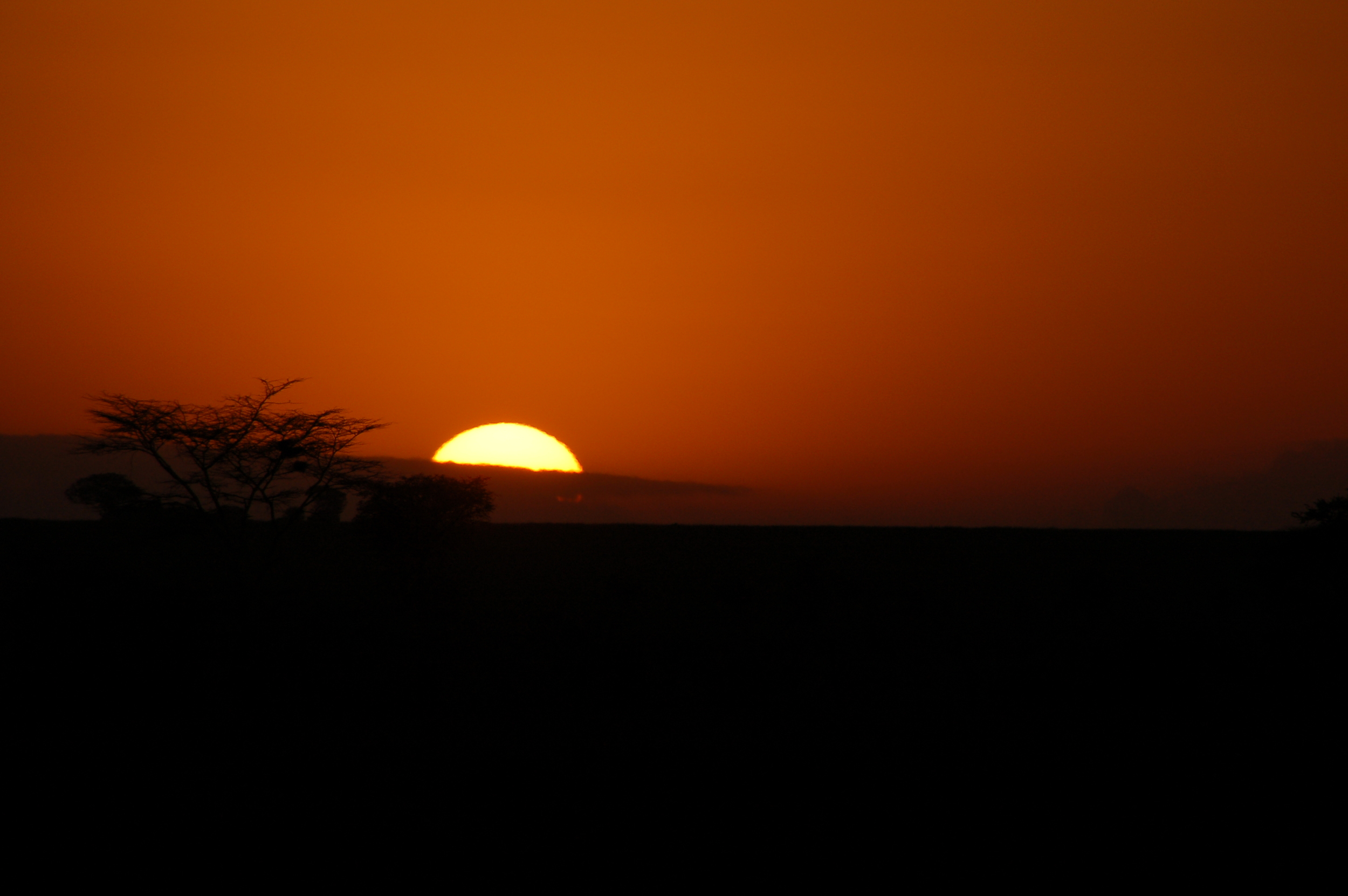 """""""...as the sun set.""""  ⬇︎"""