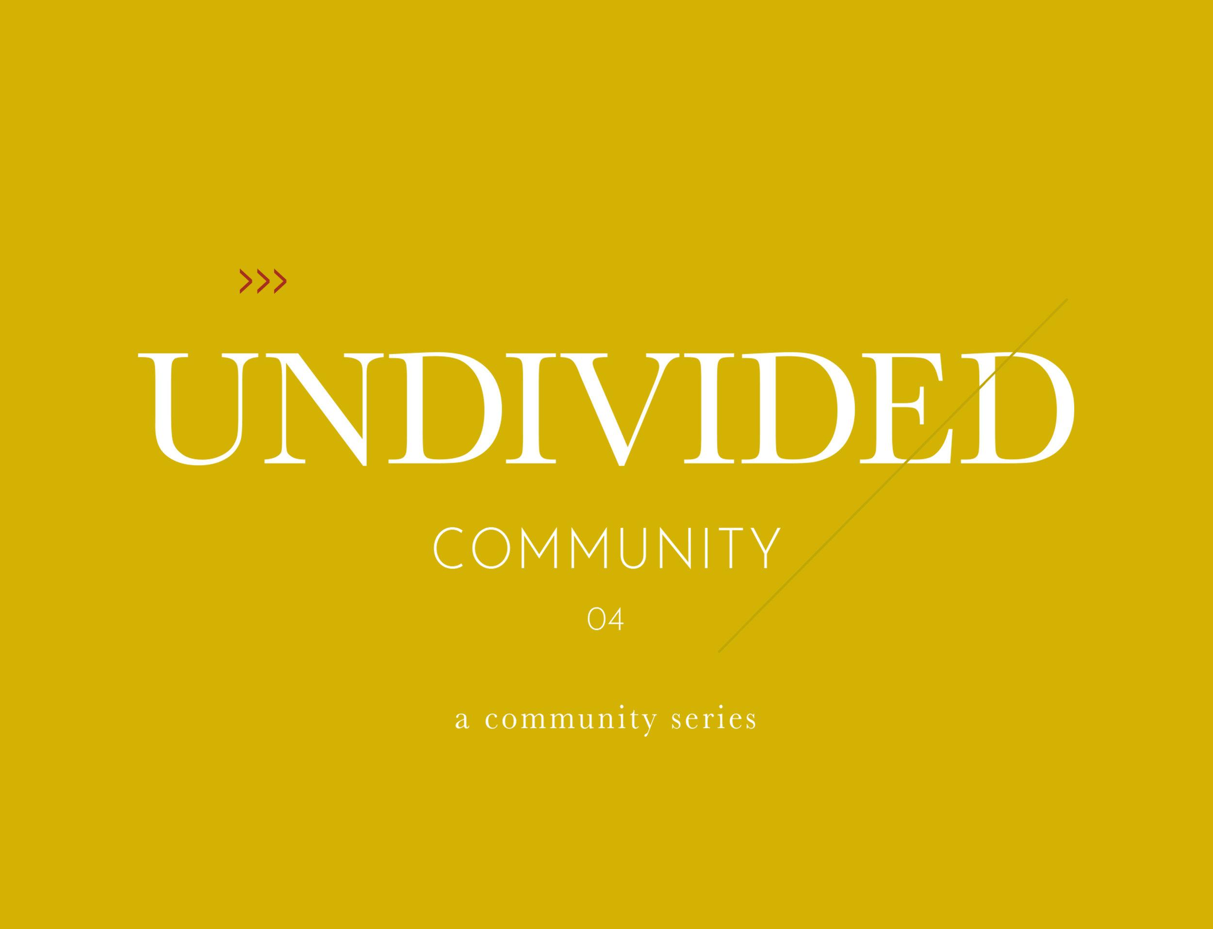 Undivided-Community5.jpg