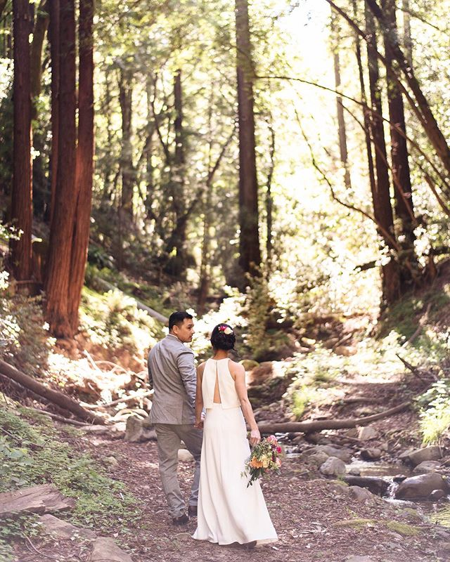 How was this California redwood wedding a year ago already!?!!?!!!! Take me back ✨💐🌲