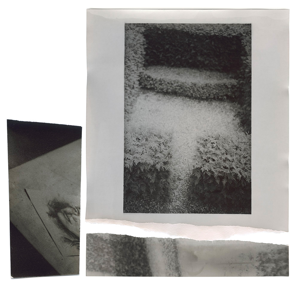 2017-0723-12 print02 v3b.jpg