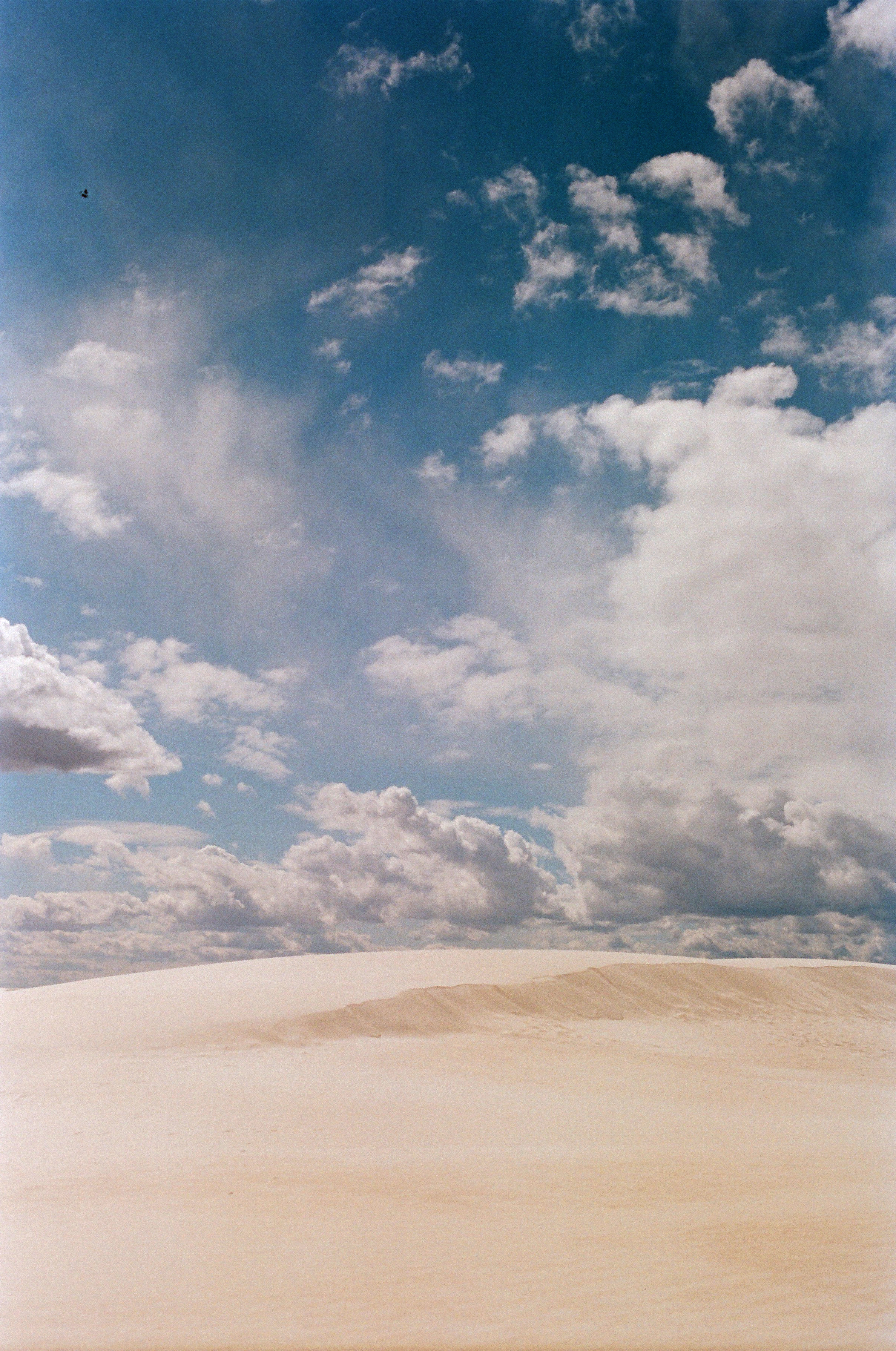 04 - White Sands.JPG