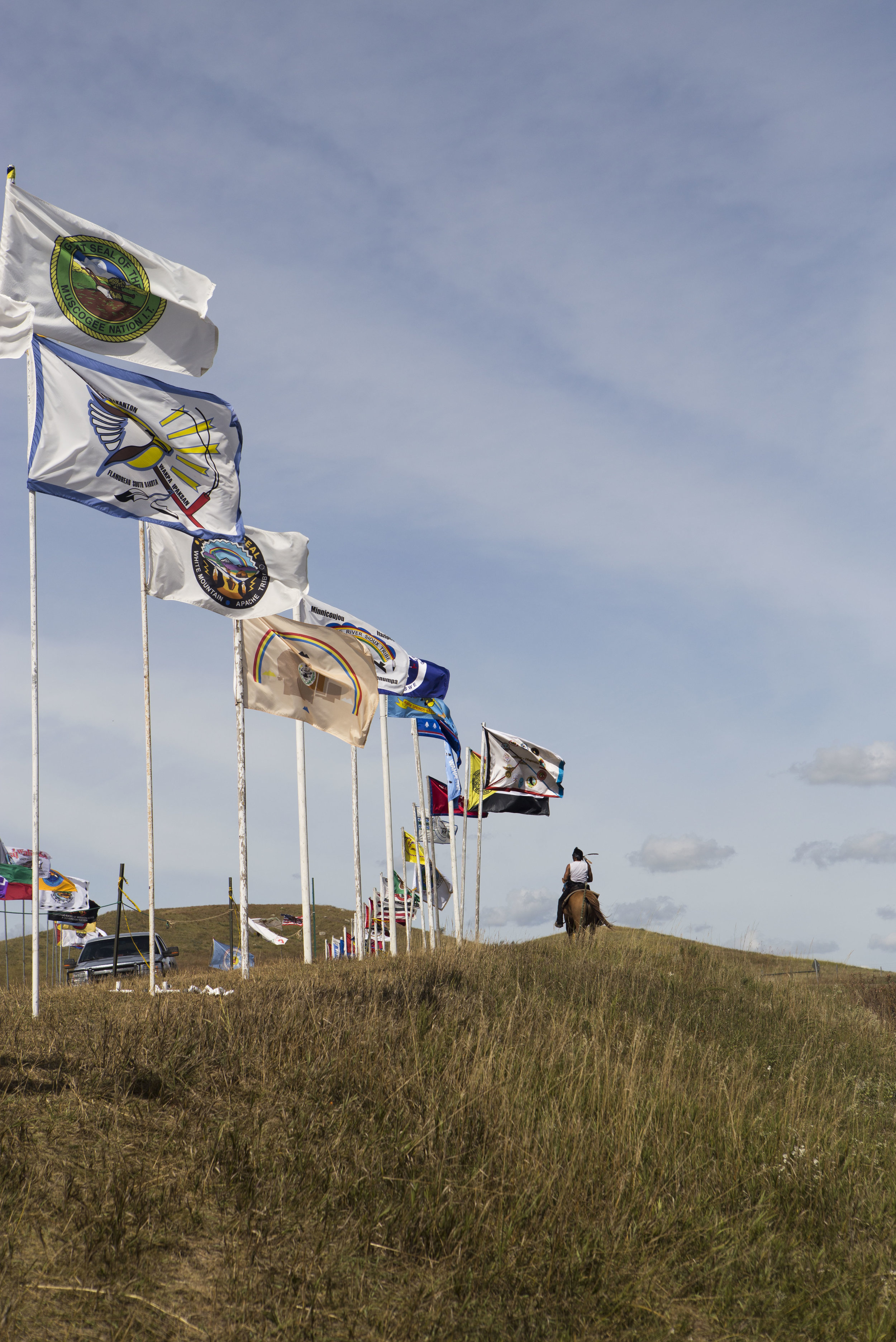 DAPL Rider along Flag Avenue.jpg