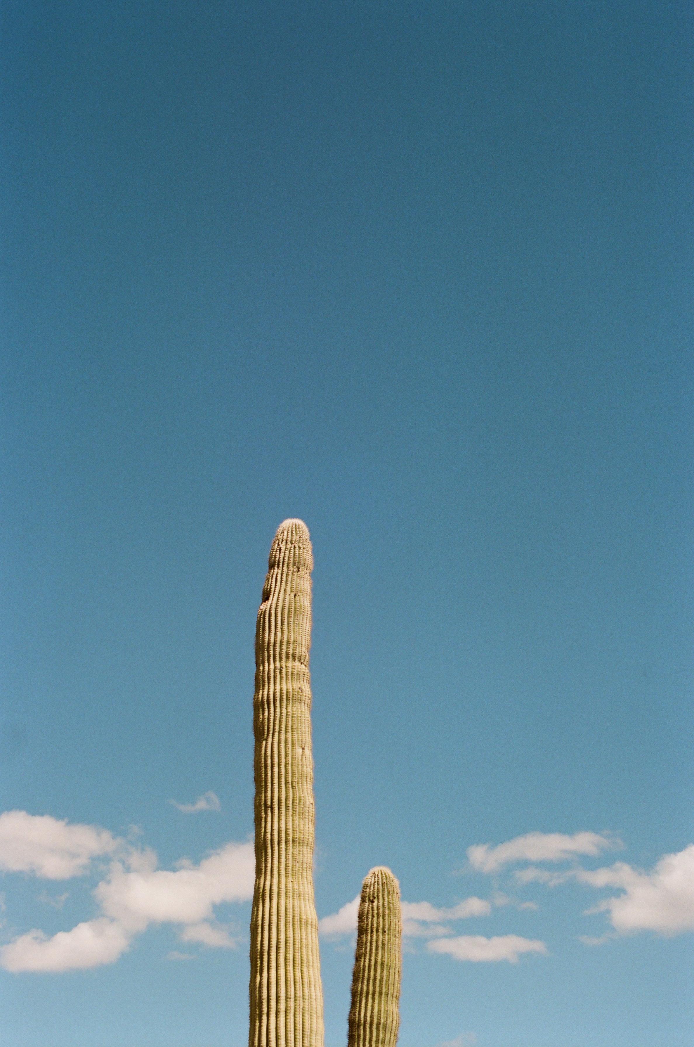 06 - Tucson.JPG