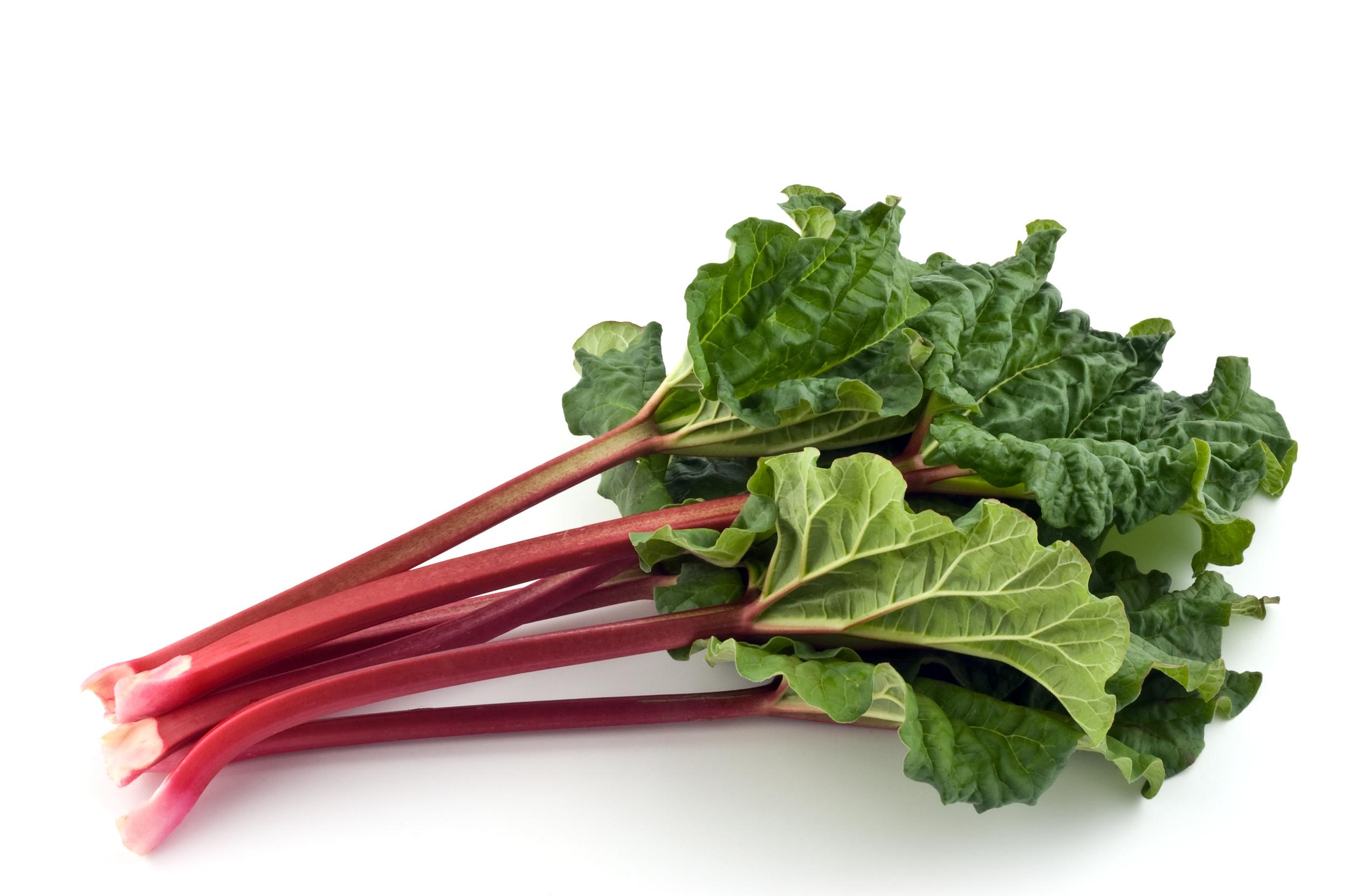 rhubarb large.jpg