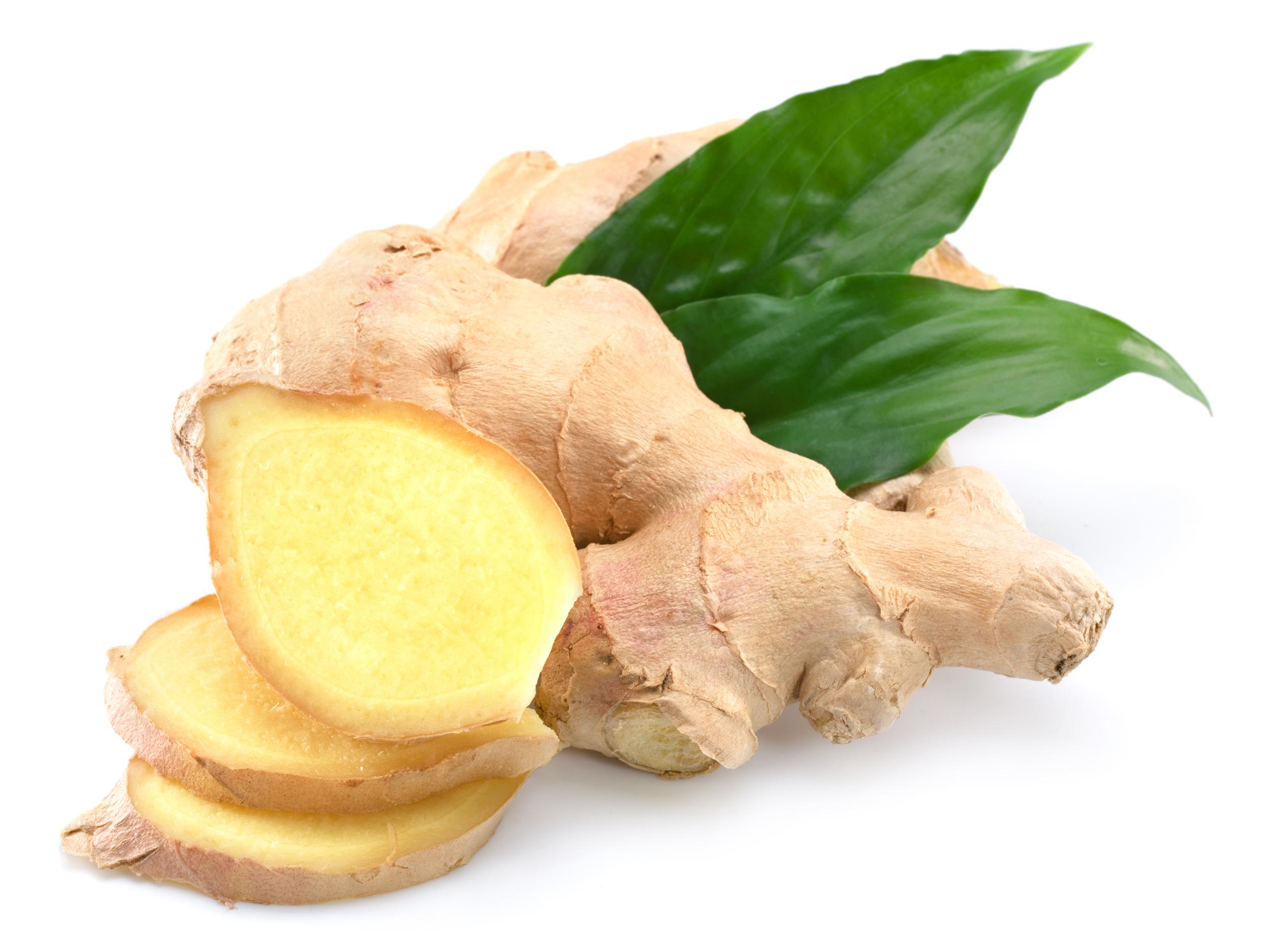 ginger large.jpg