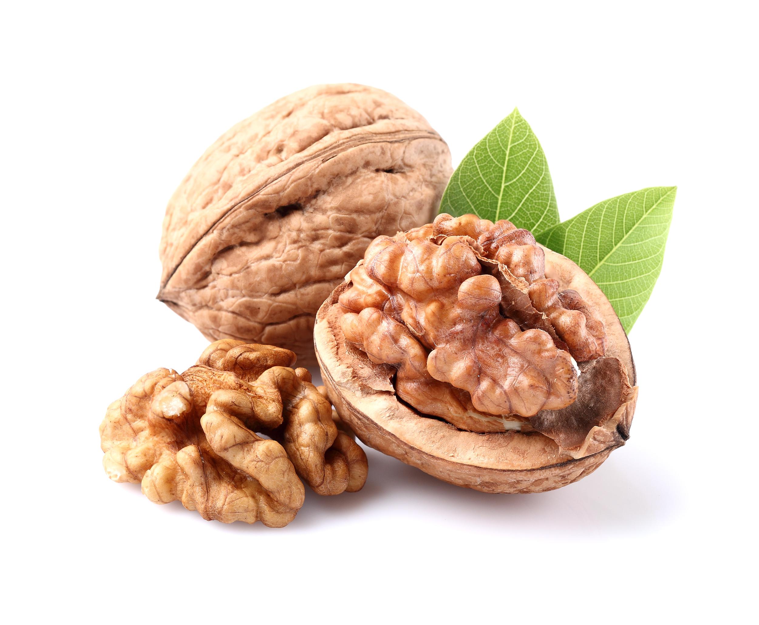 walnut large.jpg