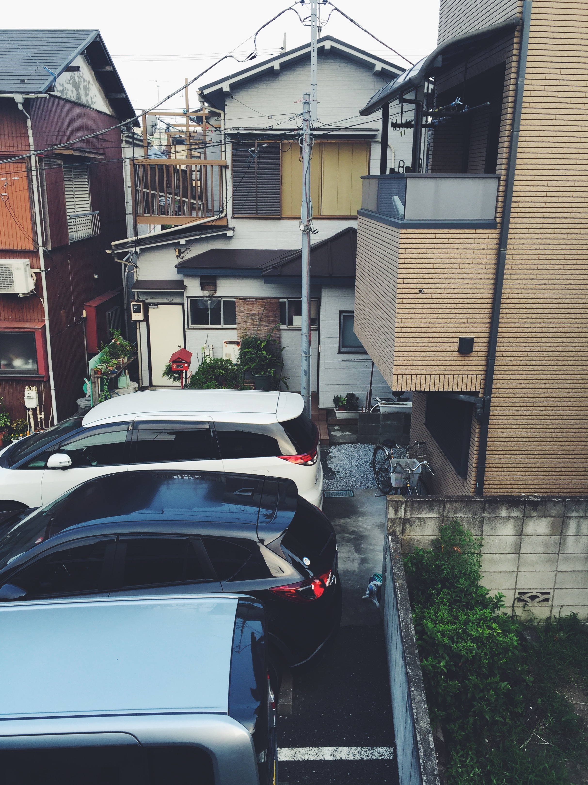 Ohayou, Japan