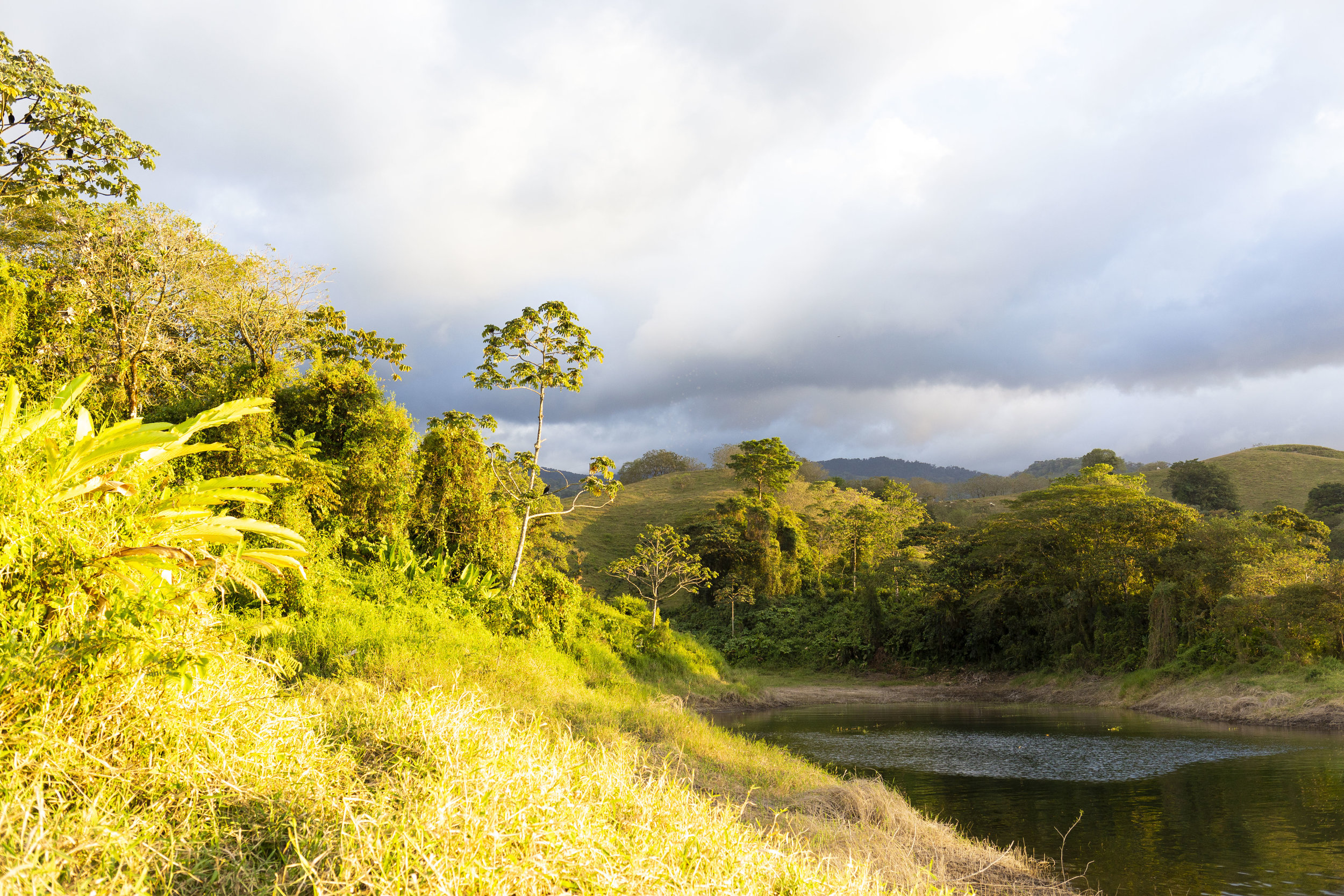 The view from the walk around Lake Arenal (close to the boat ramp) in El Castillo, Costa Rica.