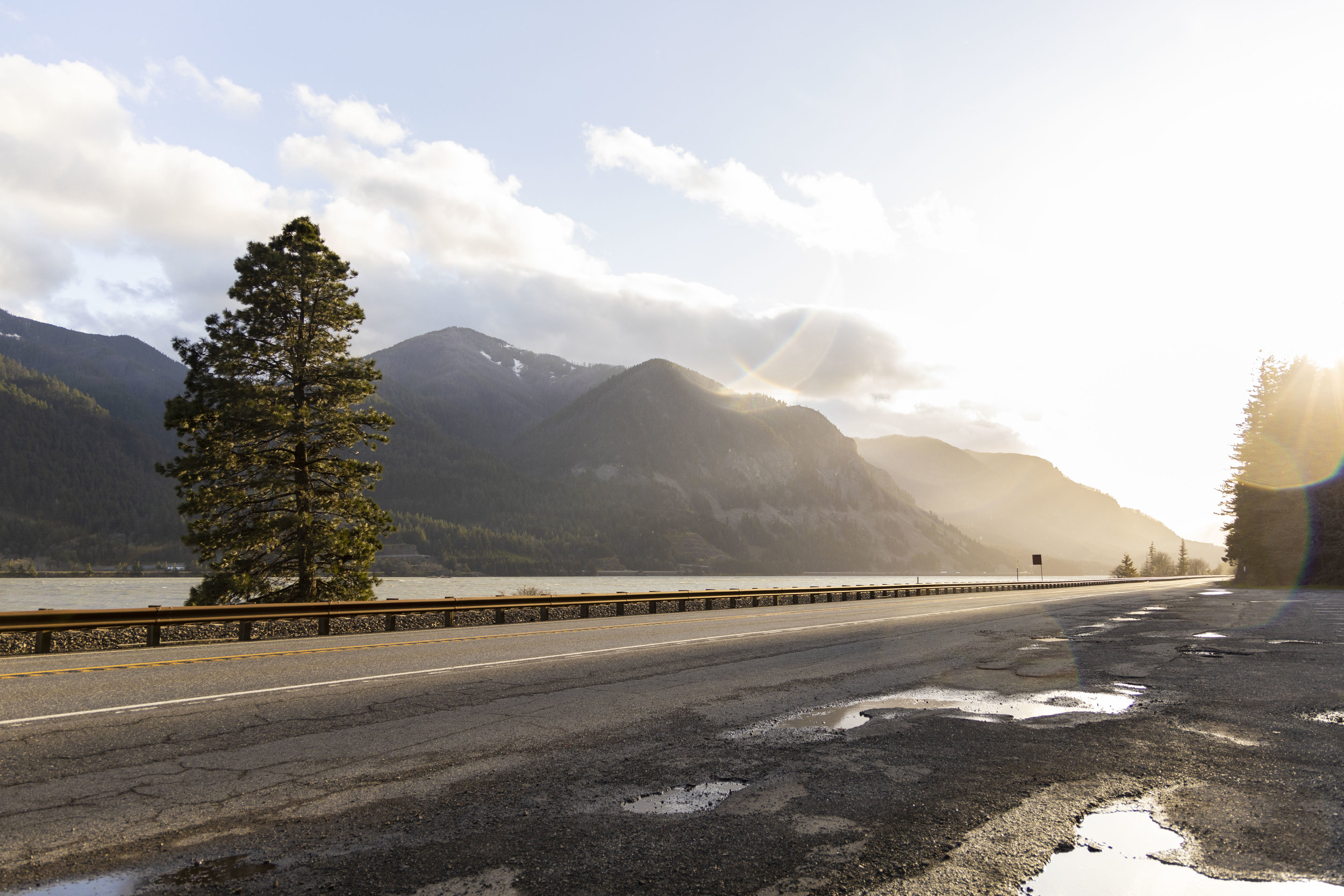 Sofia Angelina Photography Dog Mountain Trailhead