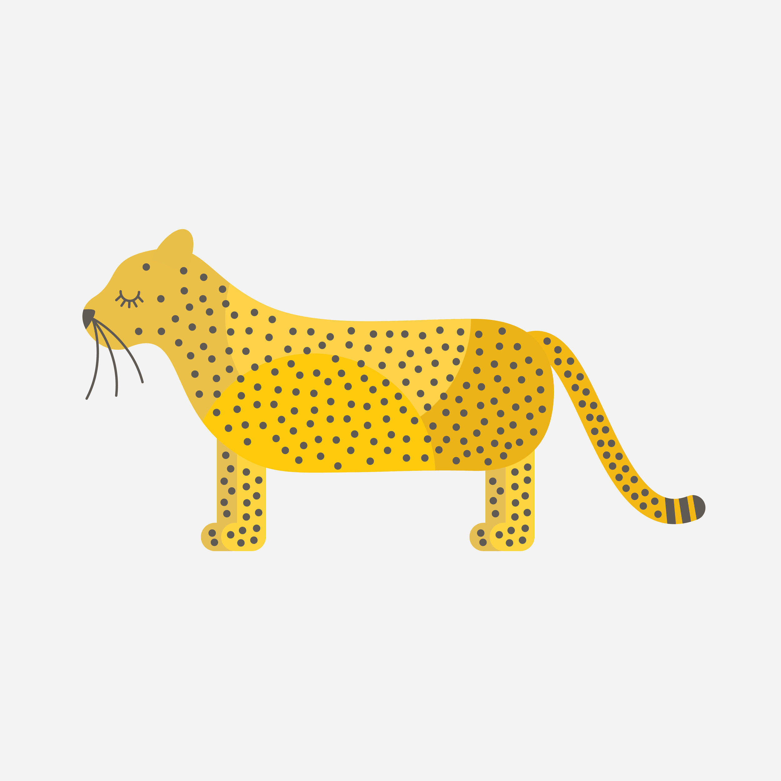 cheetah-85.jpg