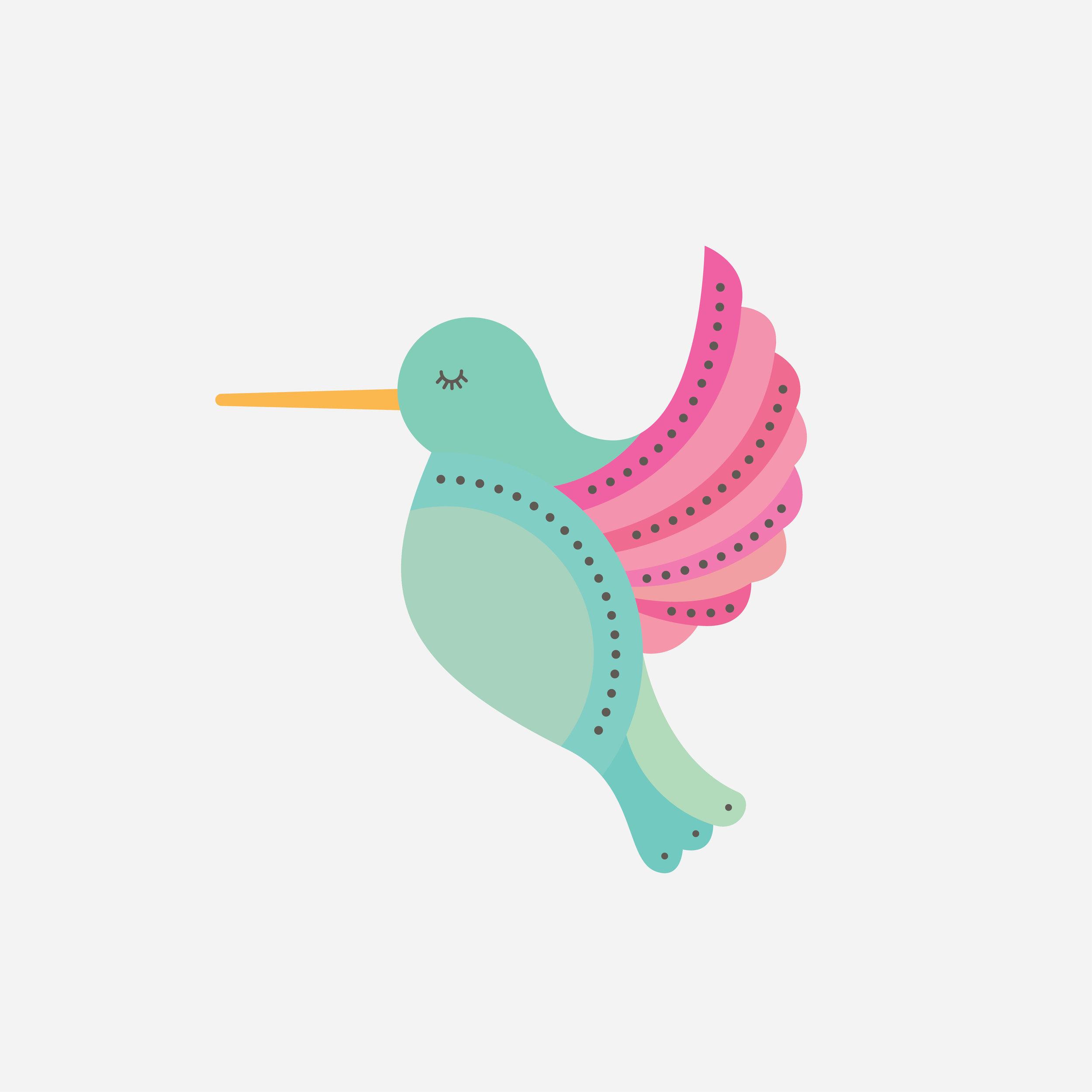 hummingbird-81.jpg