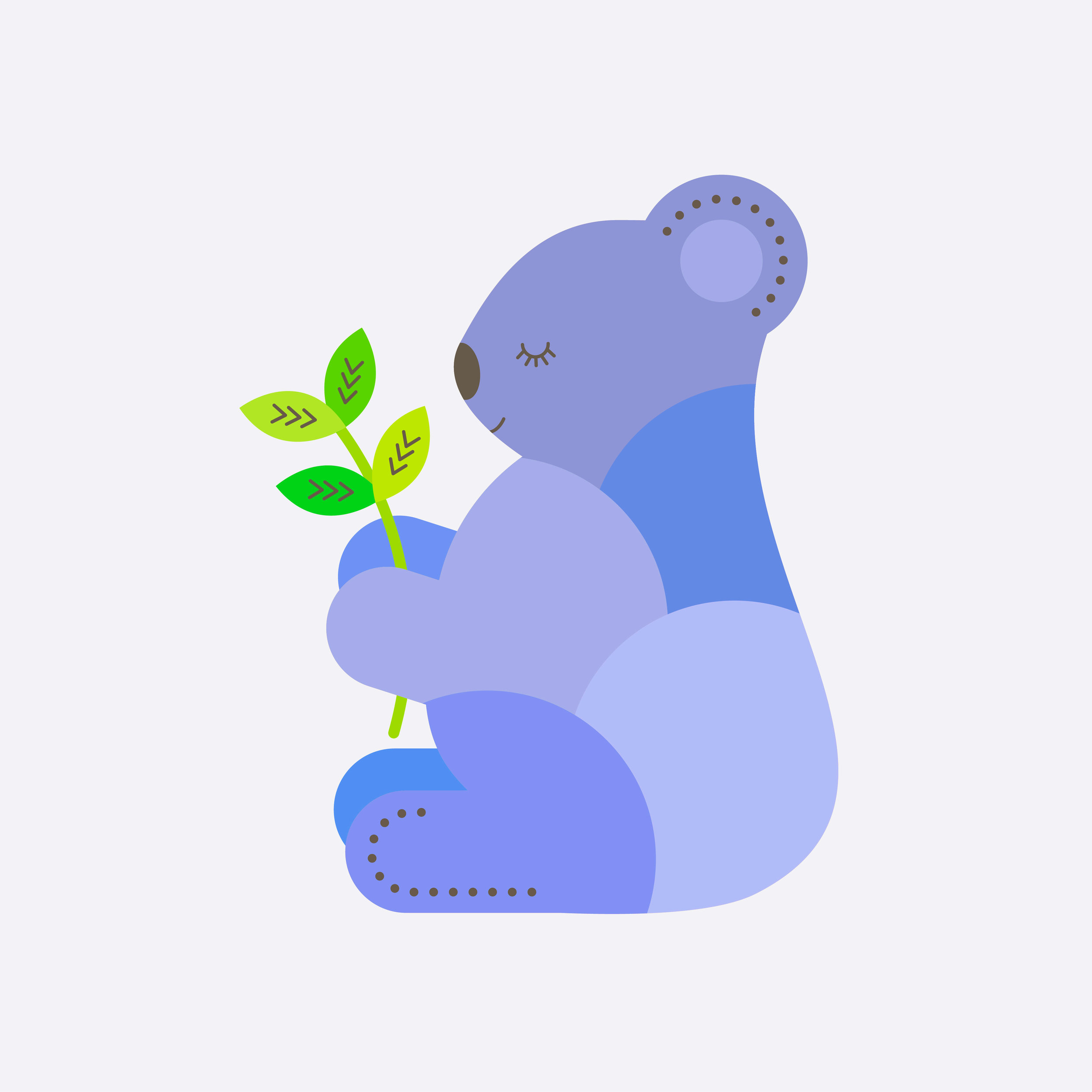 koala-30.jpg