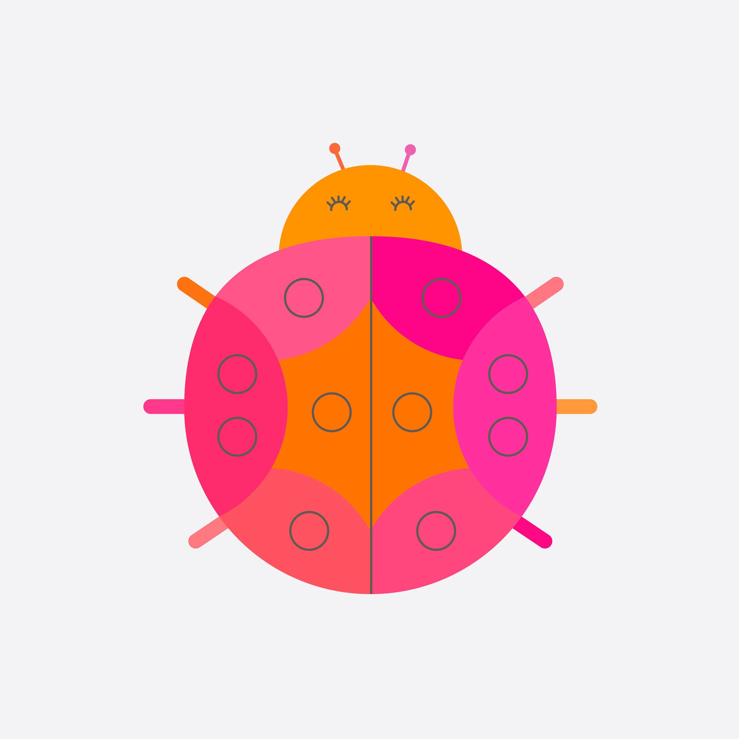 ladybug-17.jpg