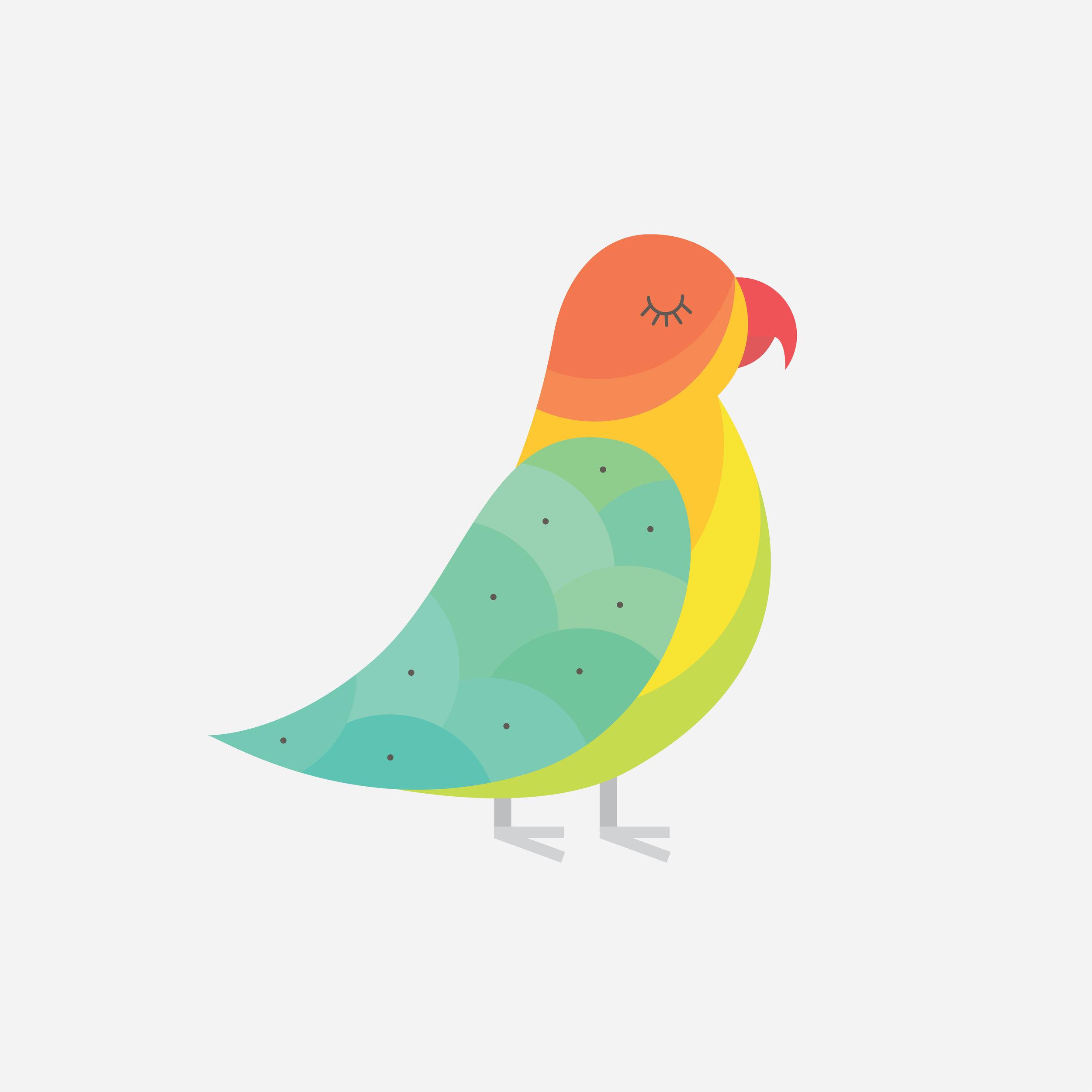 lovebird-92.jpg