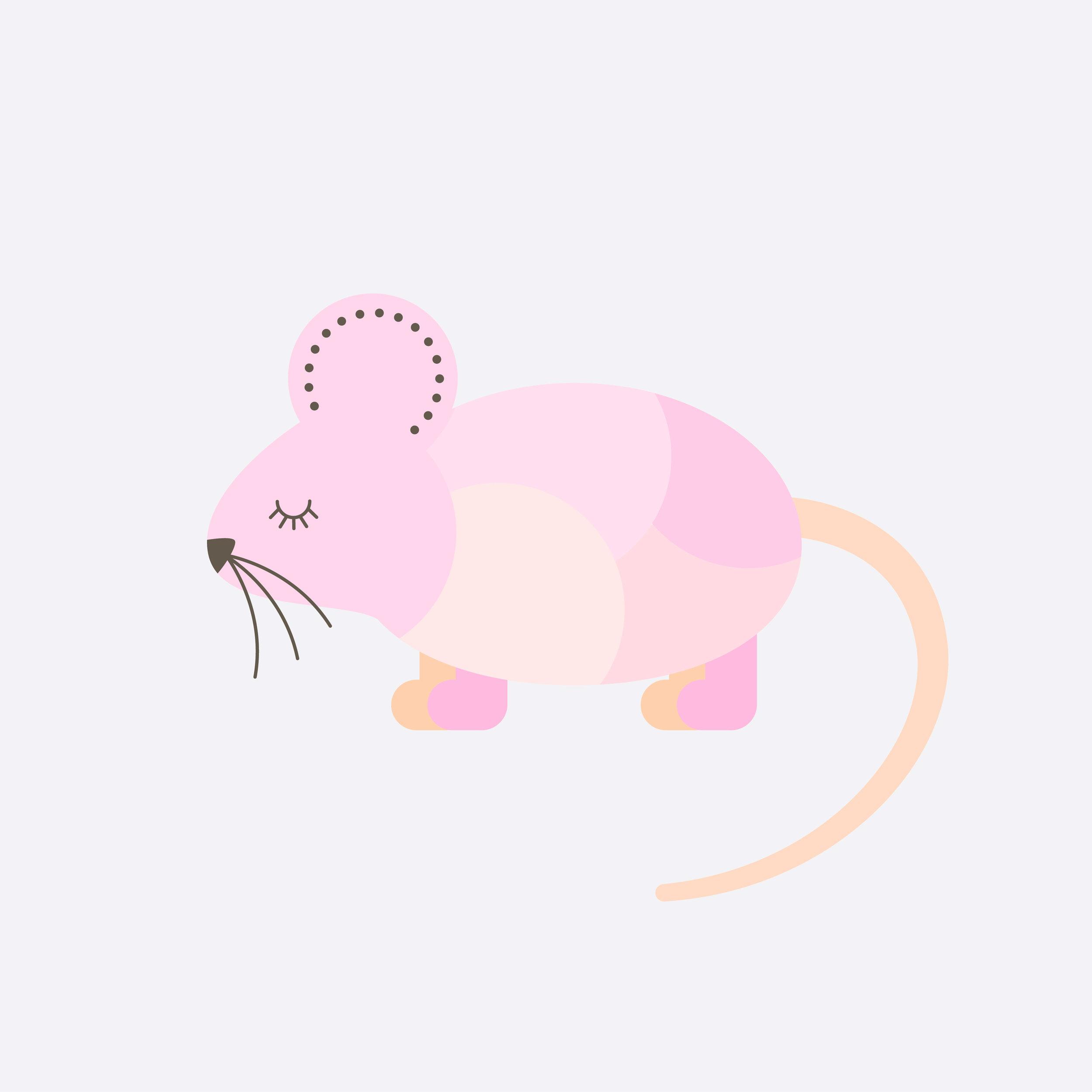 mouse-57.jpg