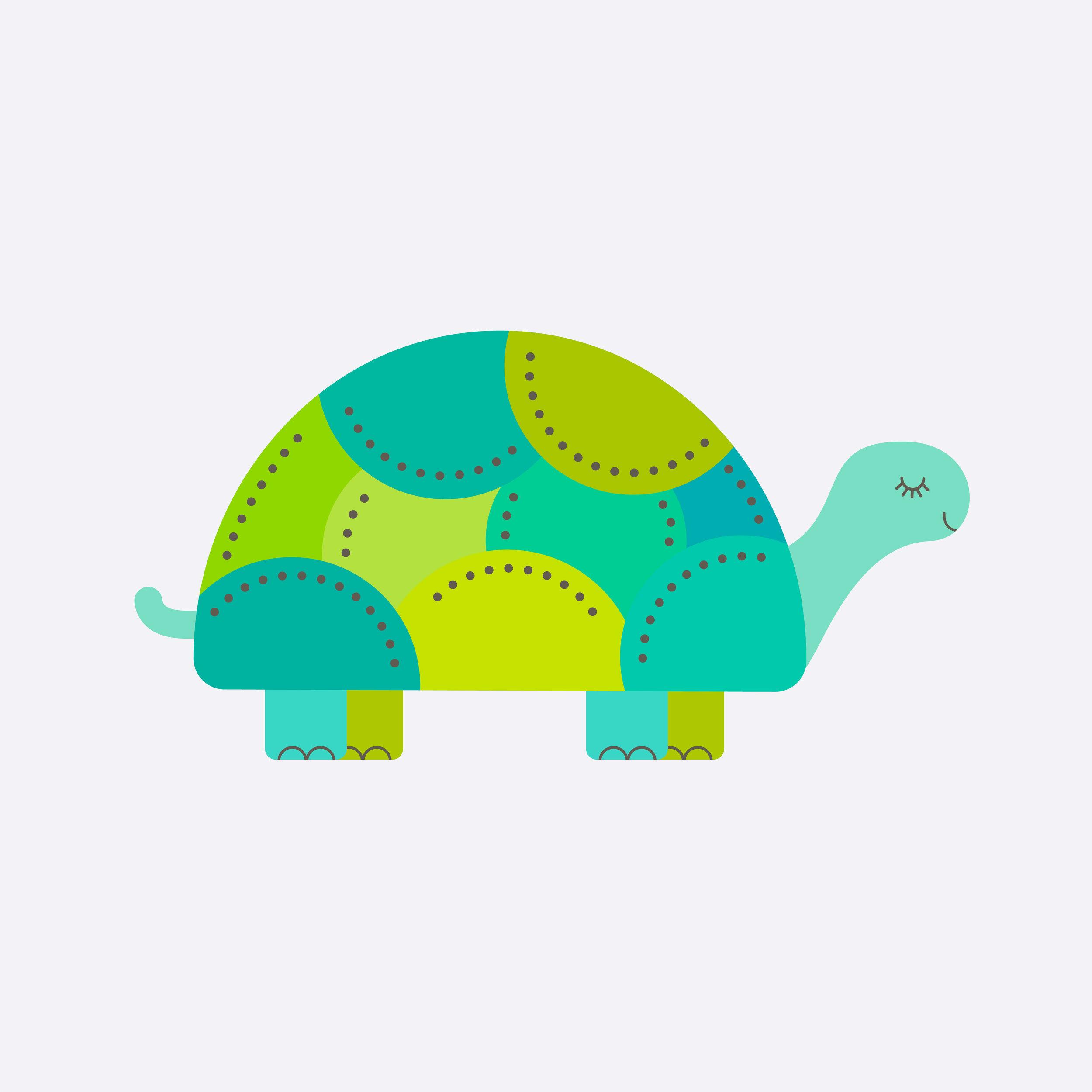 turtle-12.jpg